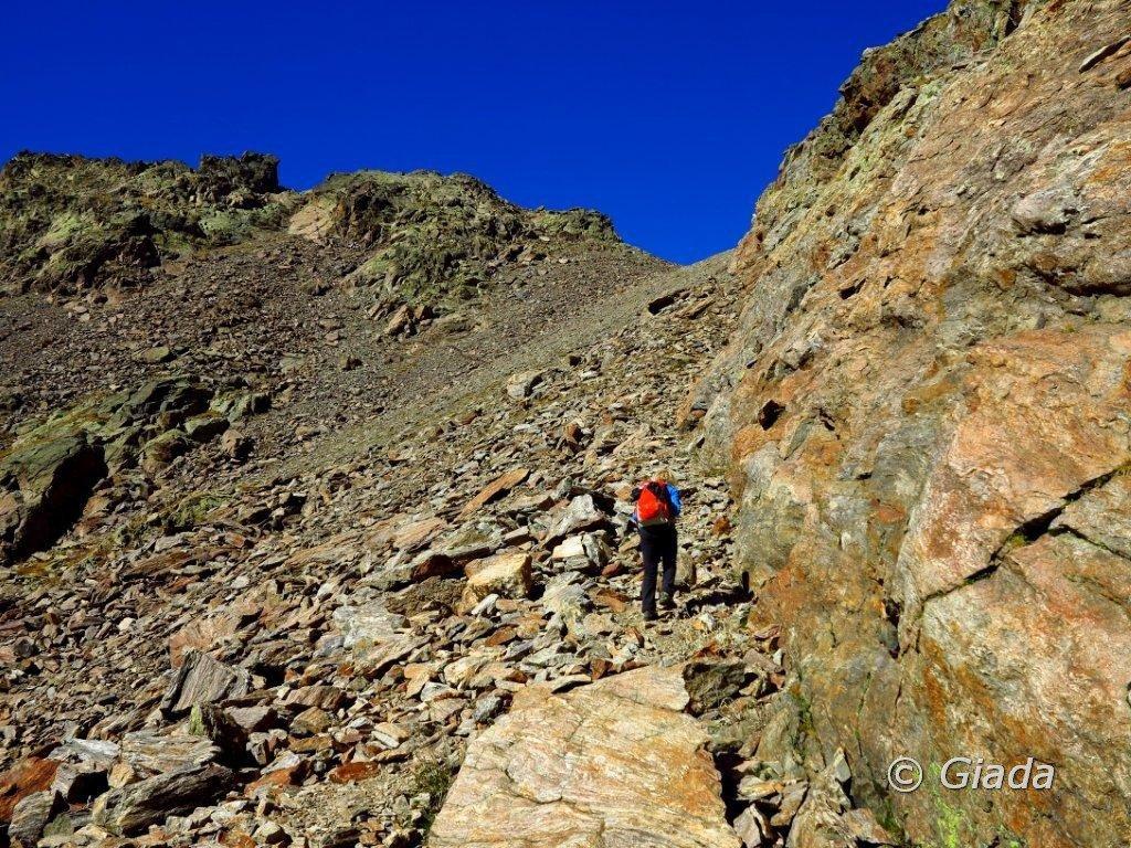 Nella pietraia che sale al Passo d'Ischiator