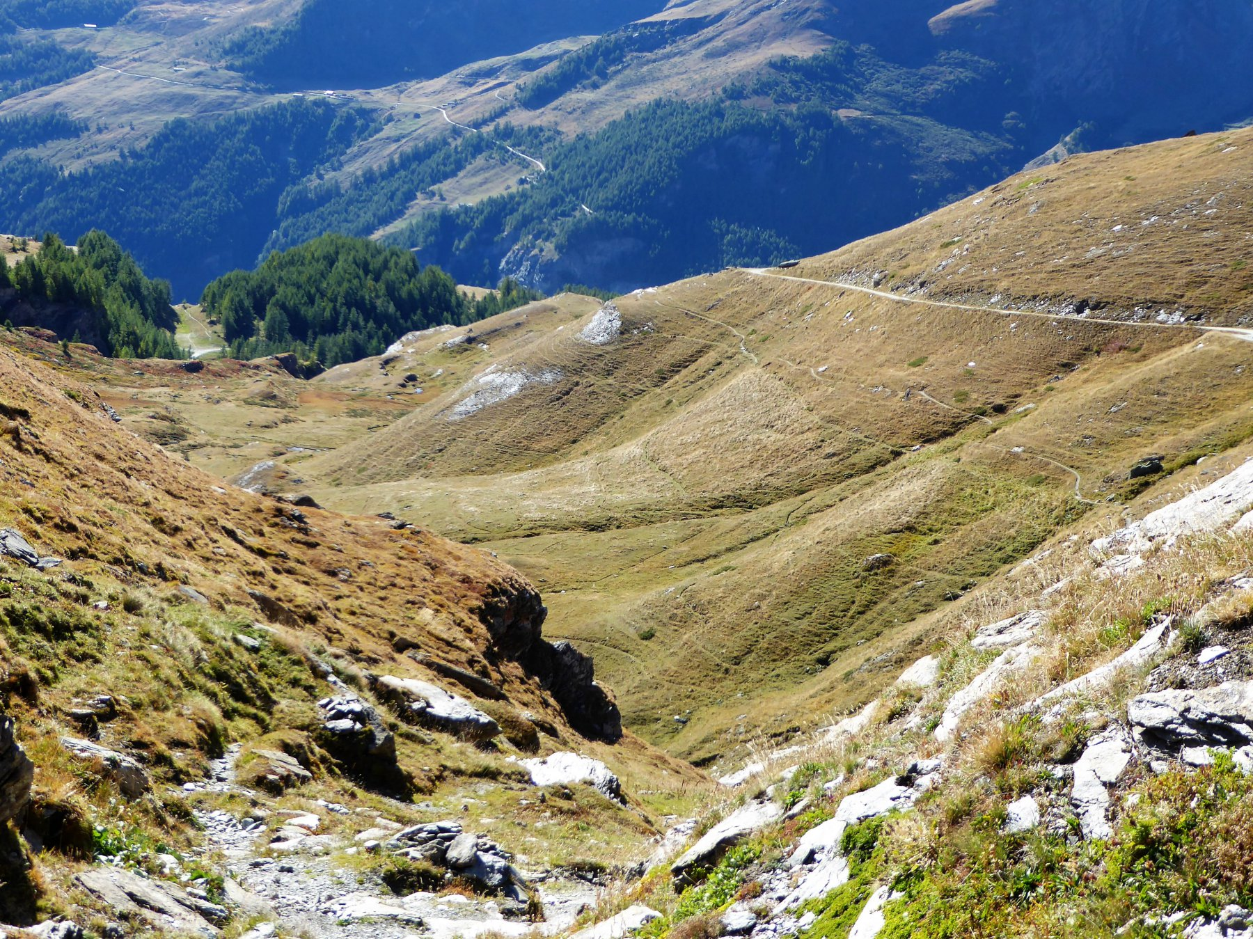 Dall'Alpe Lombardin: il pianoro attraversato e, in fondo a sinistra (tra gli alberi) il colletto 2070 m