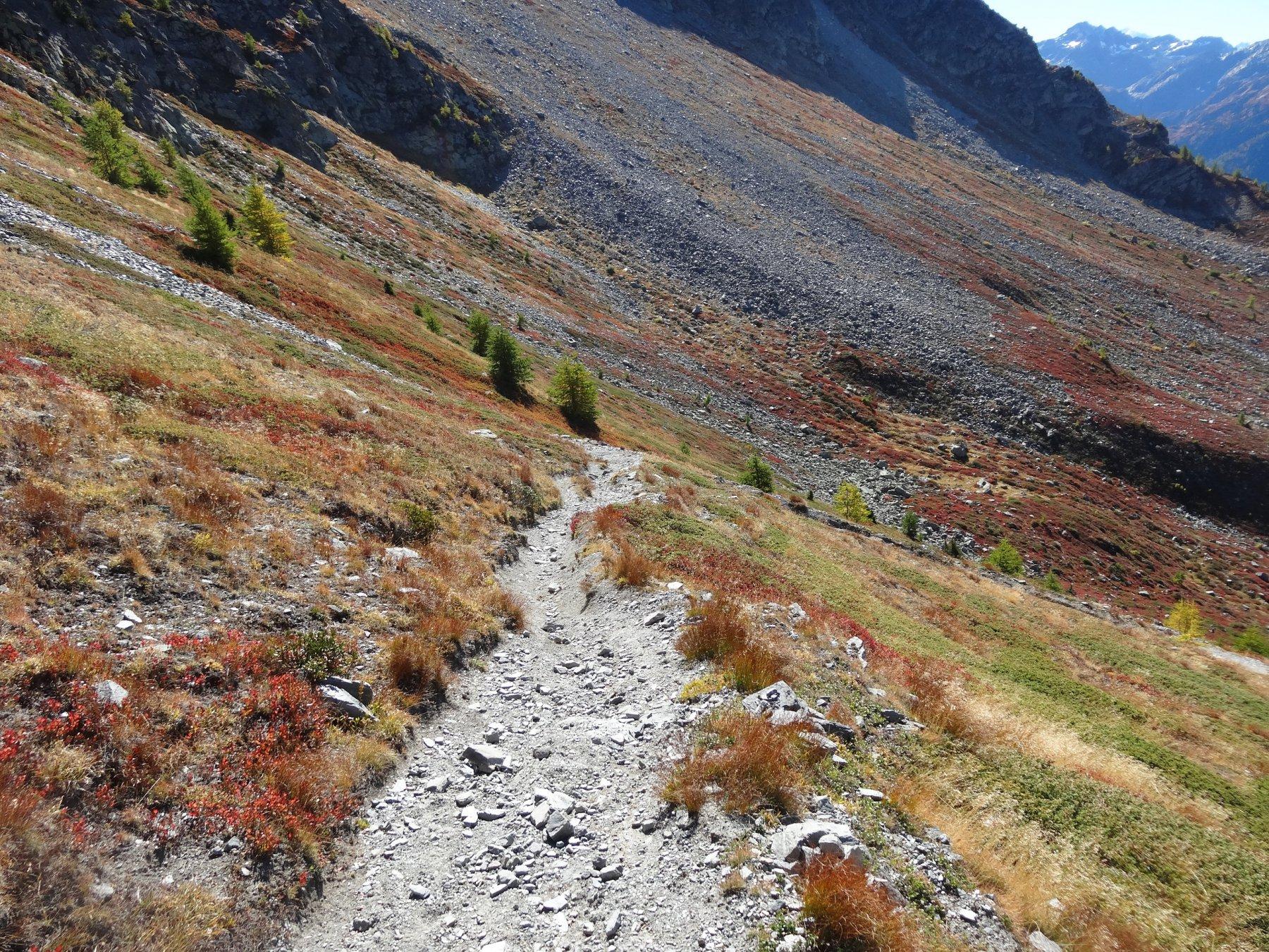 in discesa per il sentiero 2 verso la thuile