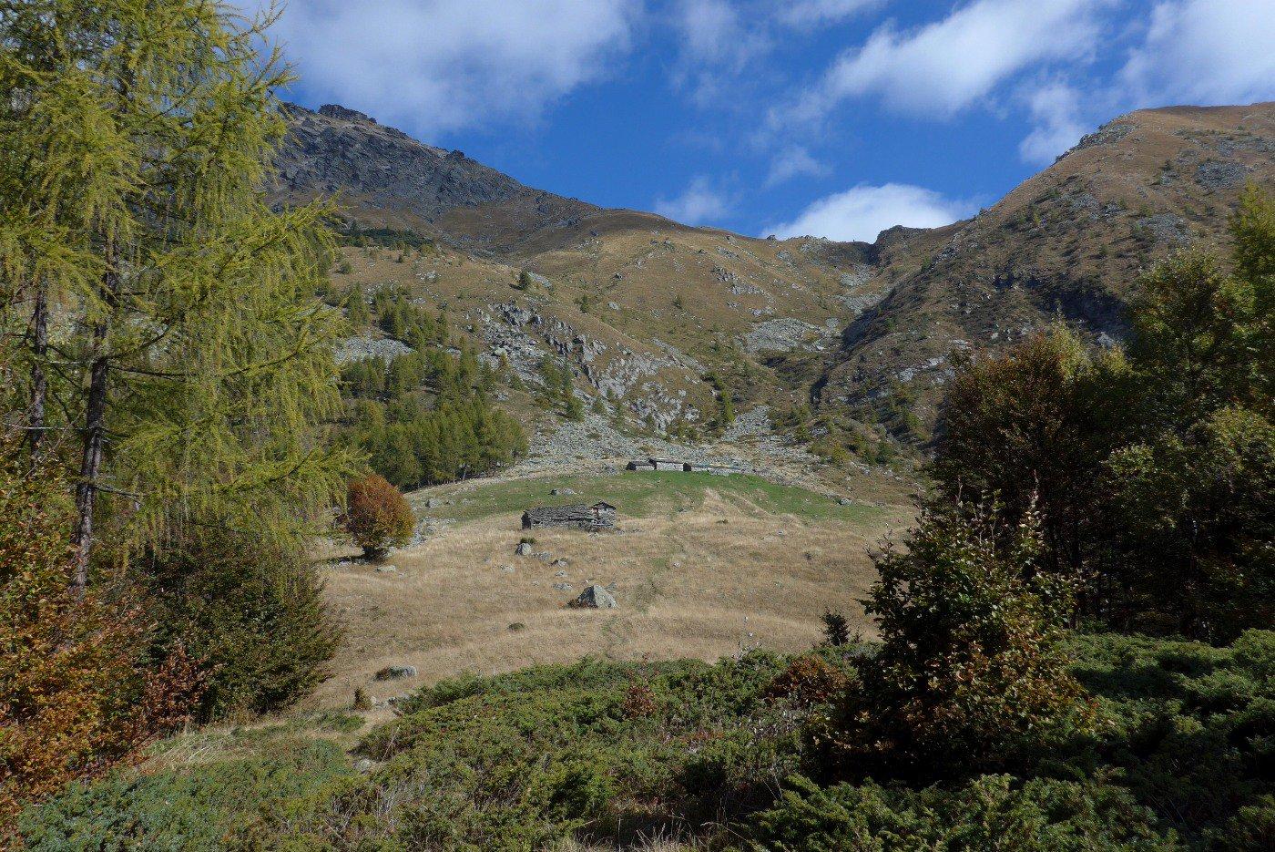 La bella Alpe d'Attia