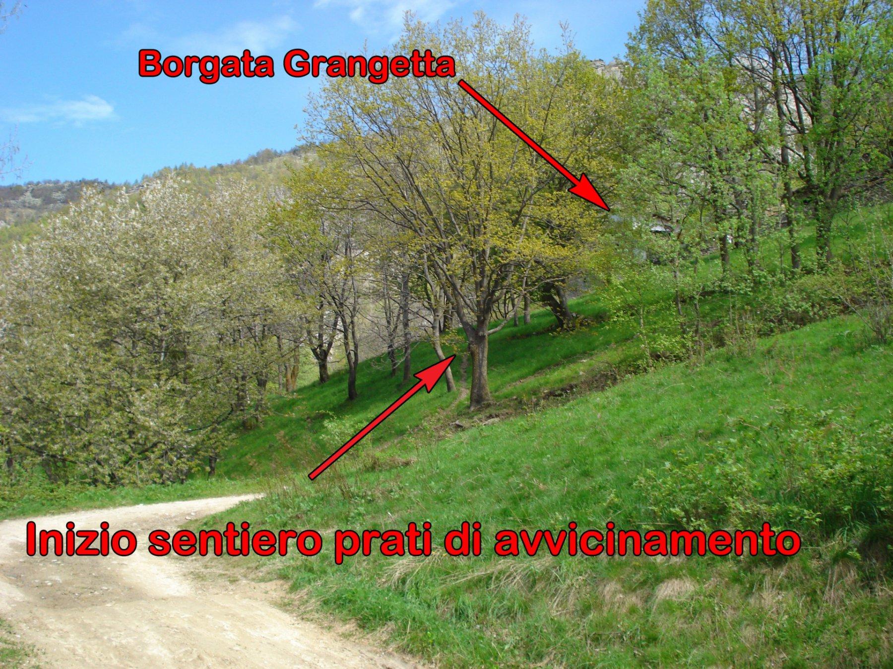 Per abbreviare il percorso di avvicinamento, prendere il sentiero che salendo per ripidi prati arriva a B.ta Grangetta ed oltrepassando la borgata si immette nuovamente nella stessa strada più in alto che percorrendola verso sx  porta sotto Roc Neir
