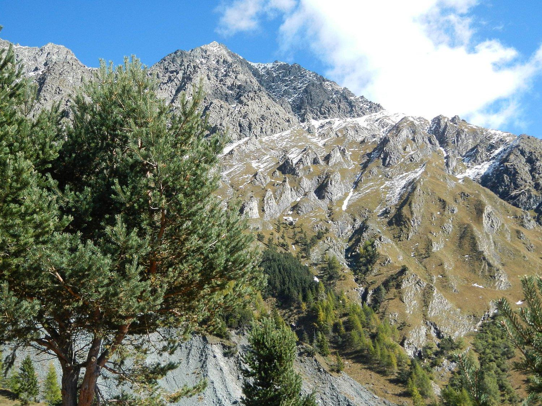 vista sulla Grand'Uia 2666 m.