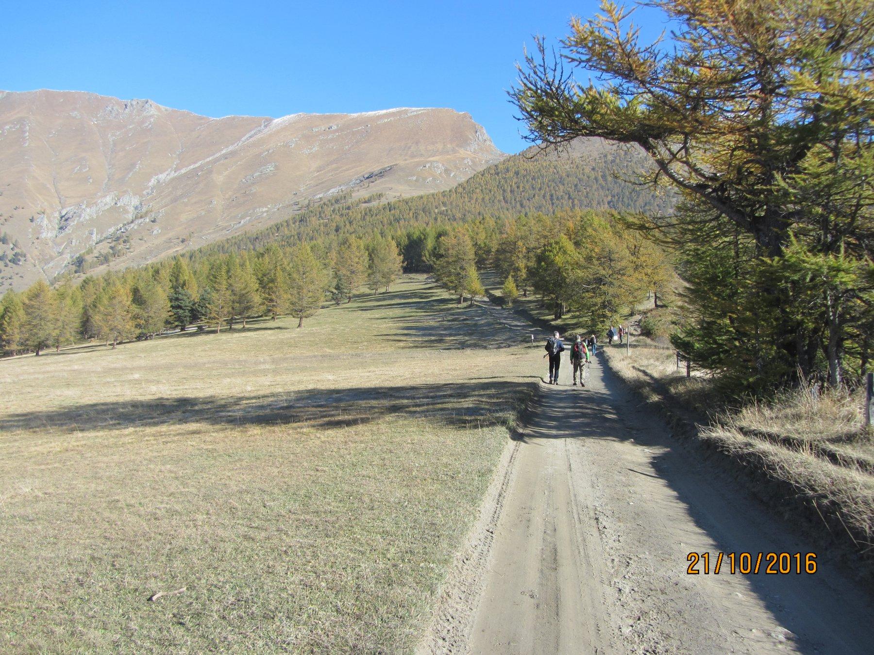 Strada sterrata tra Pra Catinat e rifugio Selliers