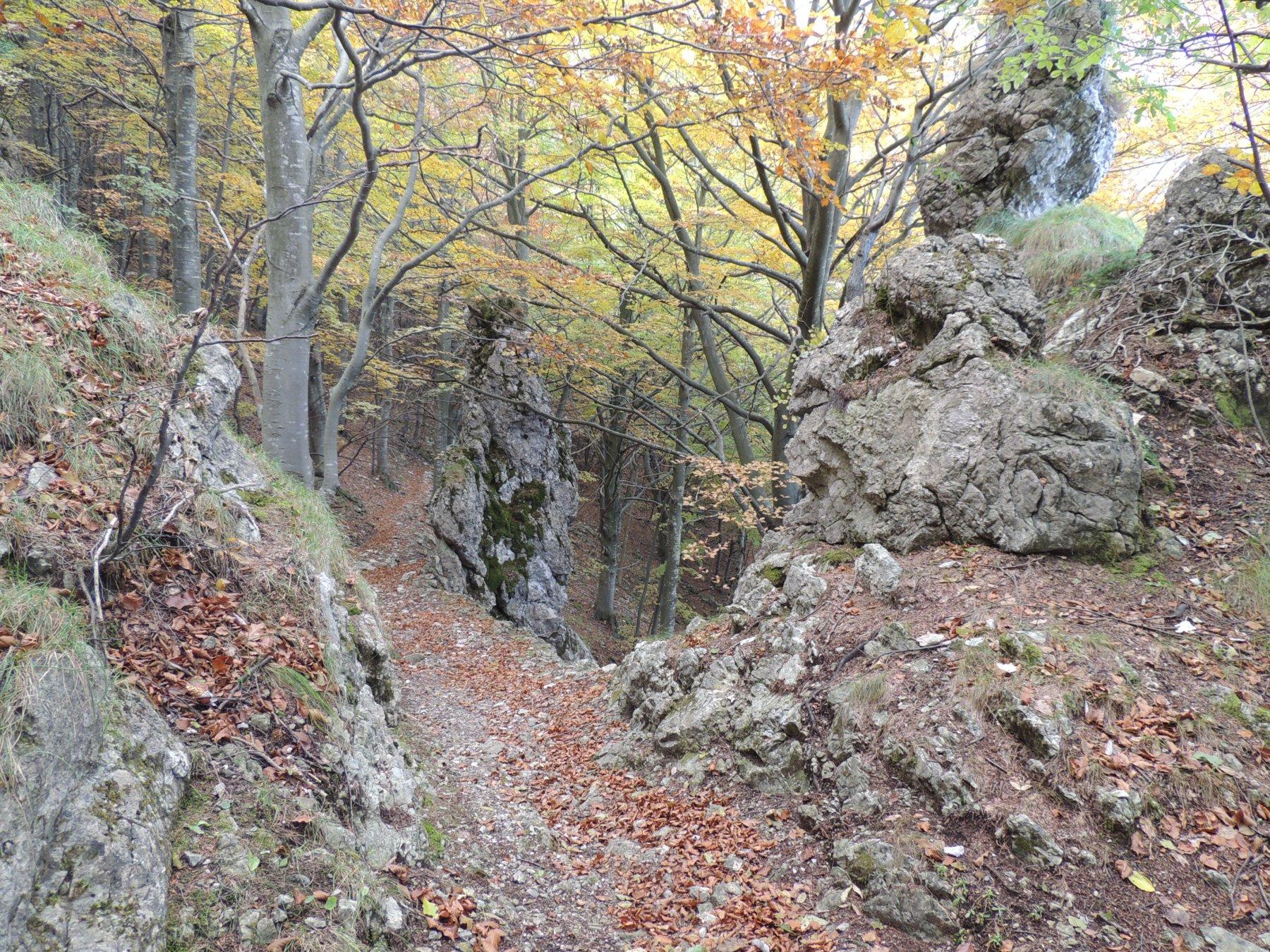 sculture rocciose nei pressi del passo Caranche