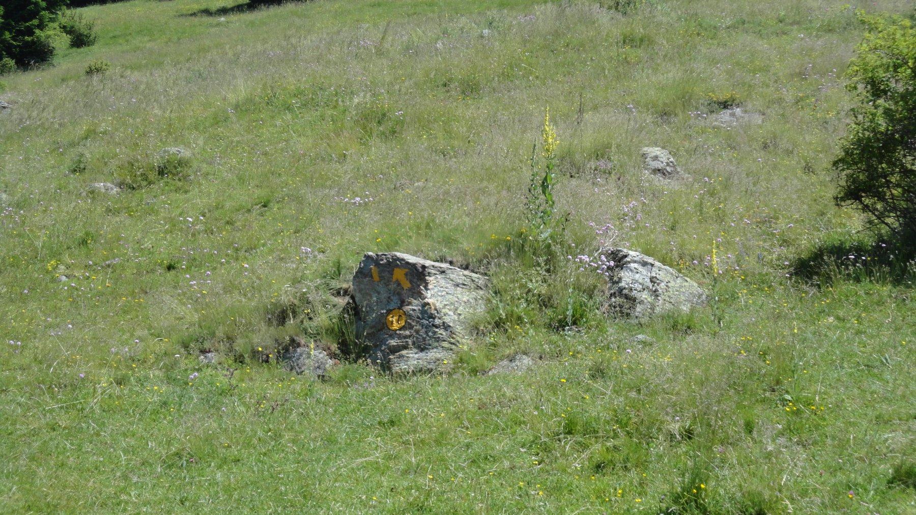 sasso  con indicazione sentiero sopra l'alpeggio di Praperiaz