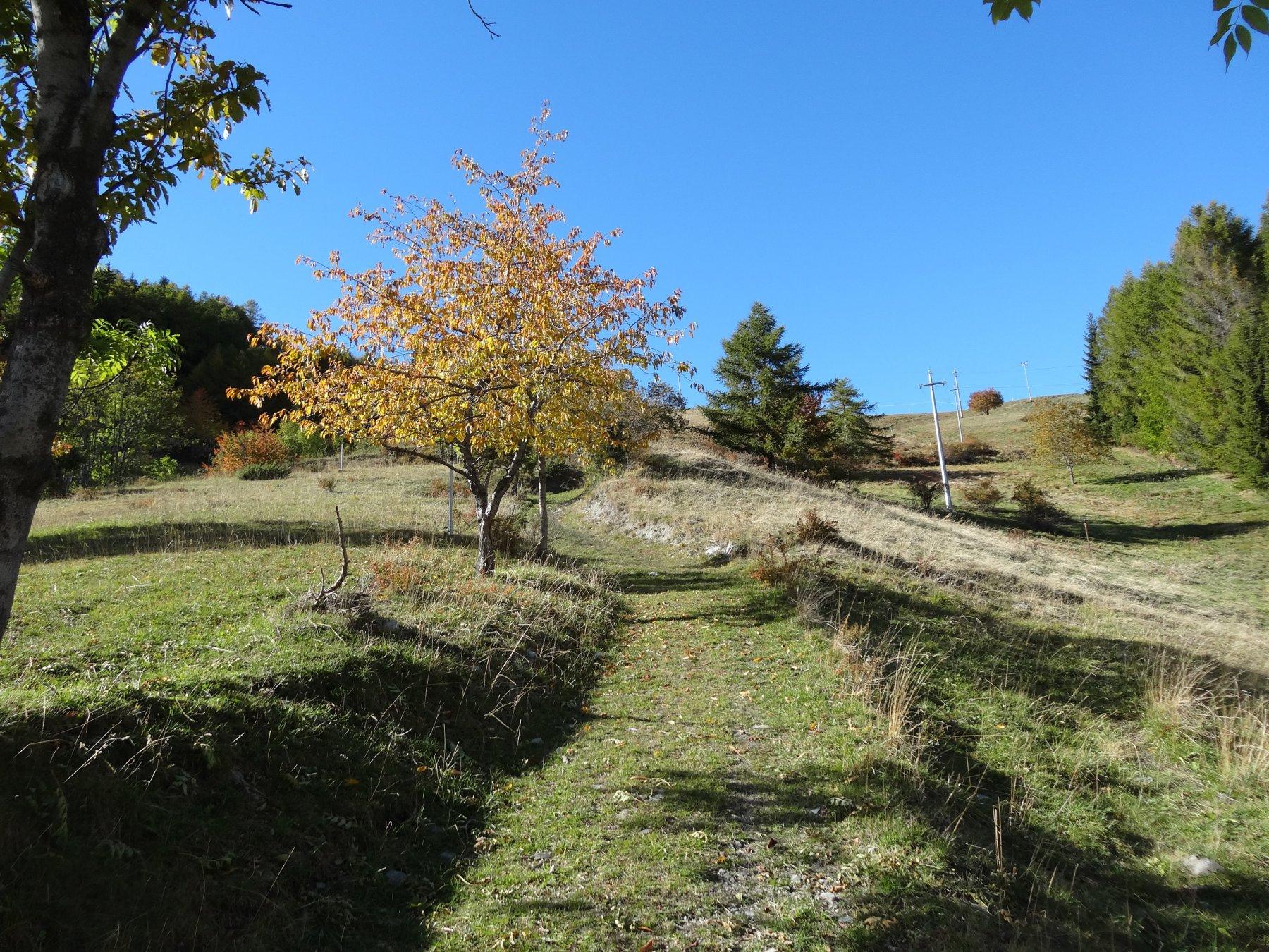 Tardiva (Costa) da Gignod, giro per Rifugio Chaligne e Plan du Debat 2016-10-21
