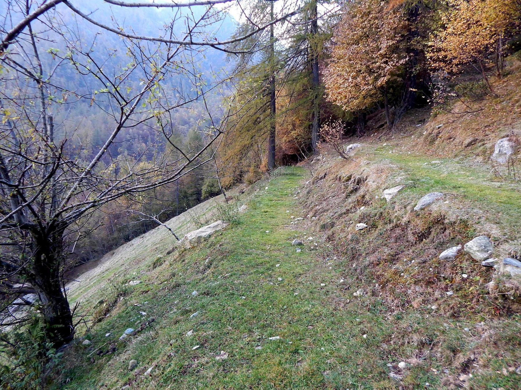 Dopo l'Alpe Longimala