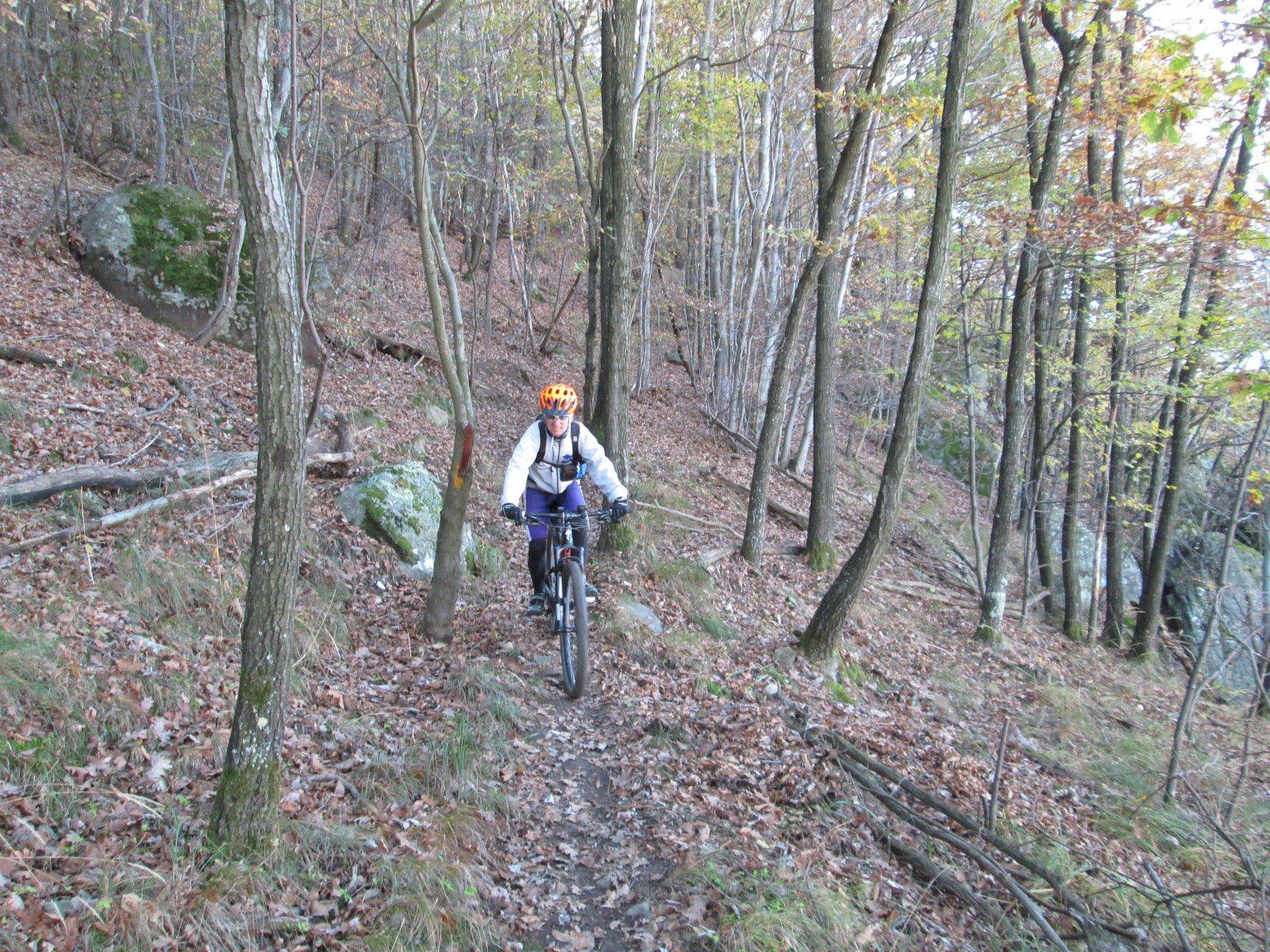 un tratto del bellissimo sentiero Roberto Nocera