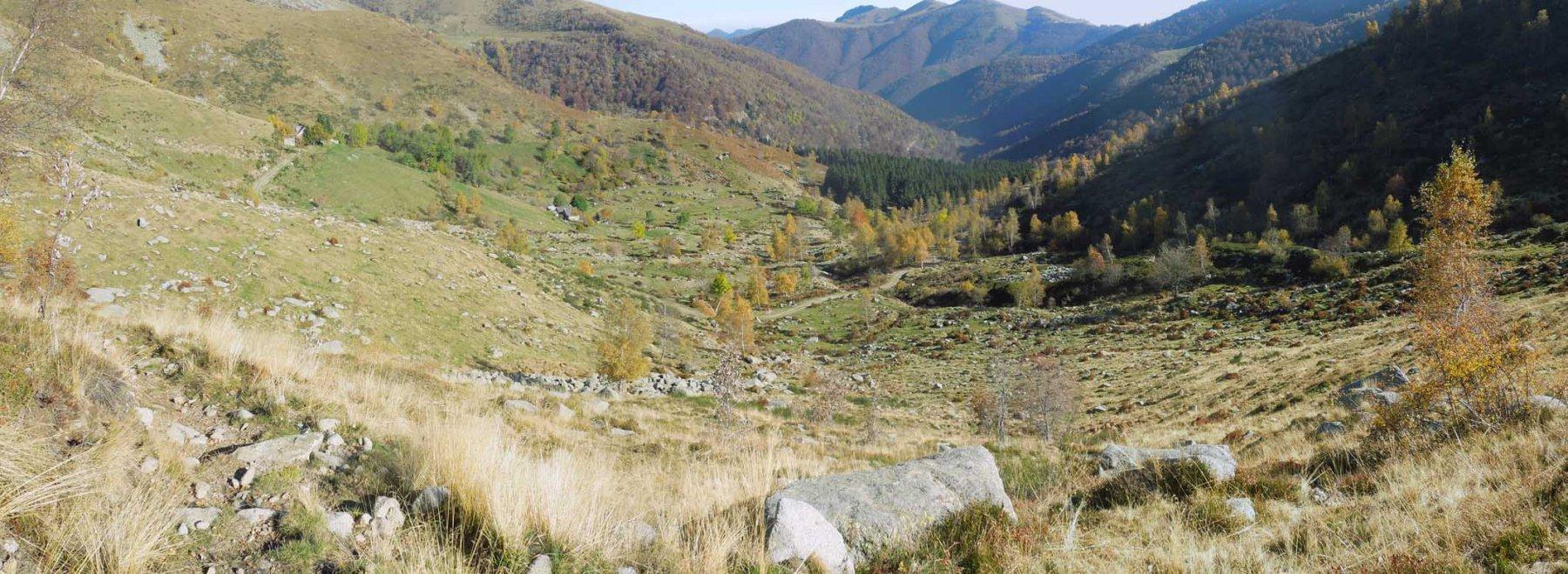 vallone di discesa dopo l'alpe la bassa