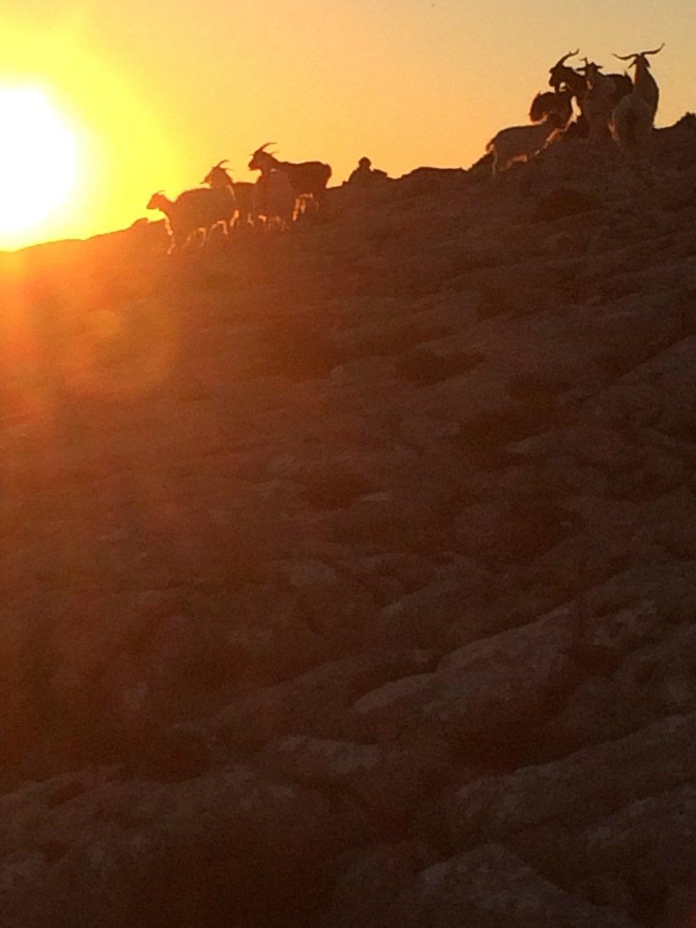 Splendido tramonto in totale solitudine, sulle creste del Supramonte