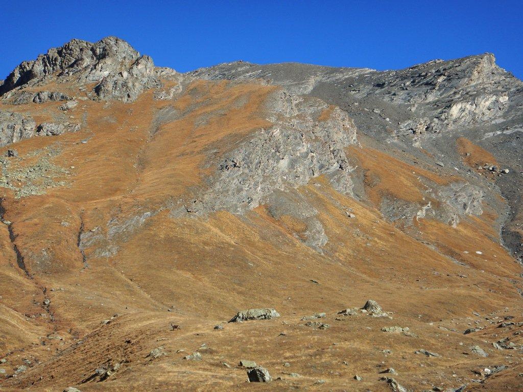 L'alto vallone di Bonafonte, a sx. la salita