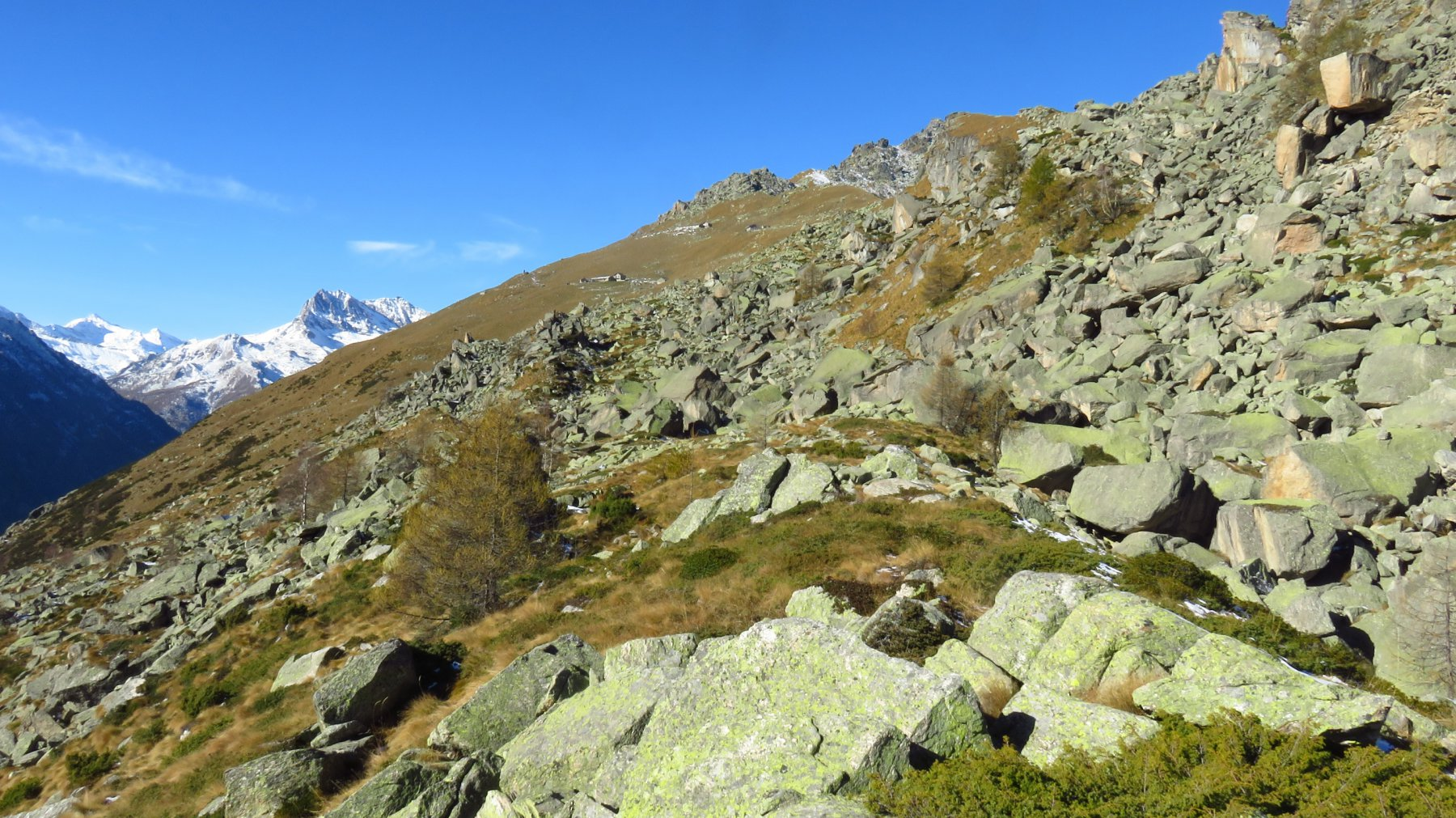 Risalita all'Alpe Giuva