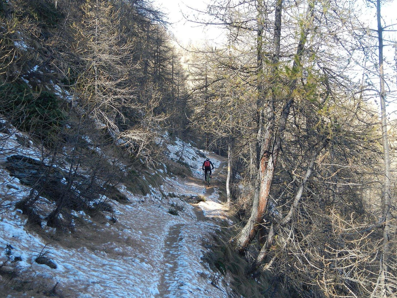 neve ghiacciata nei tratti in ombra