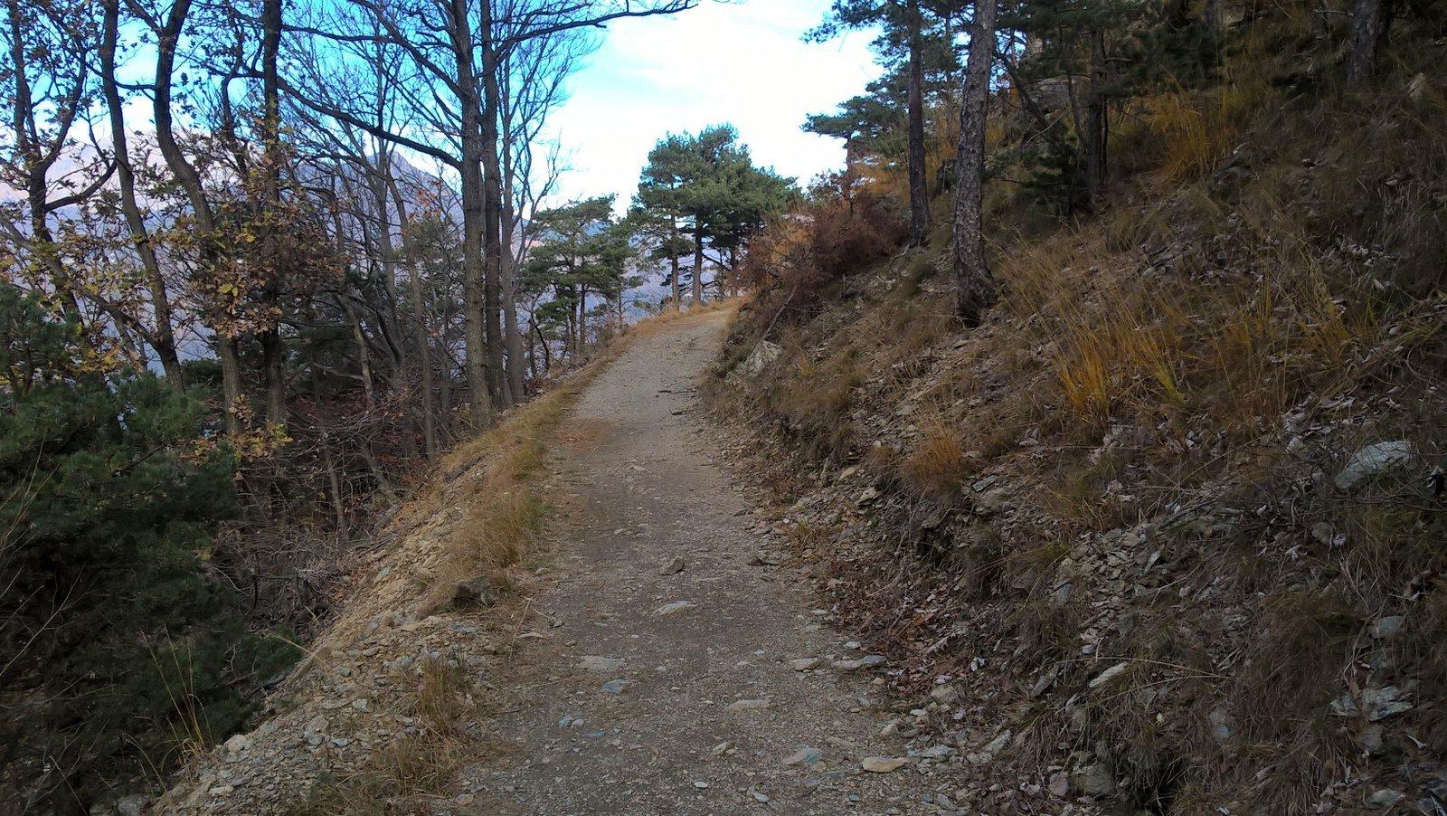 Verso Punta d'Ancoccia