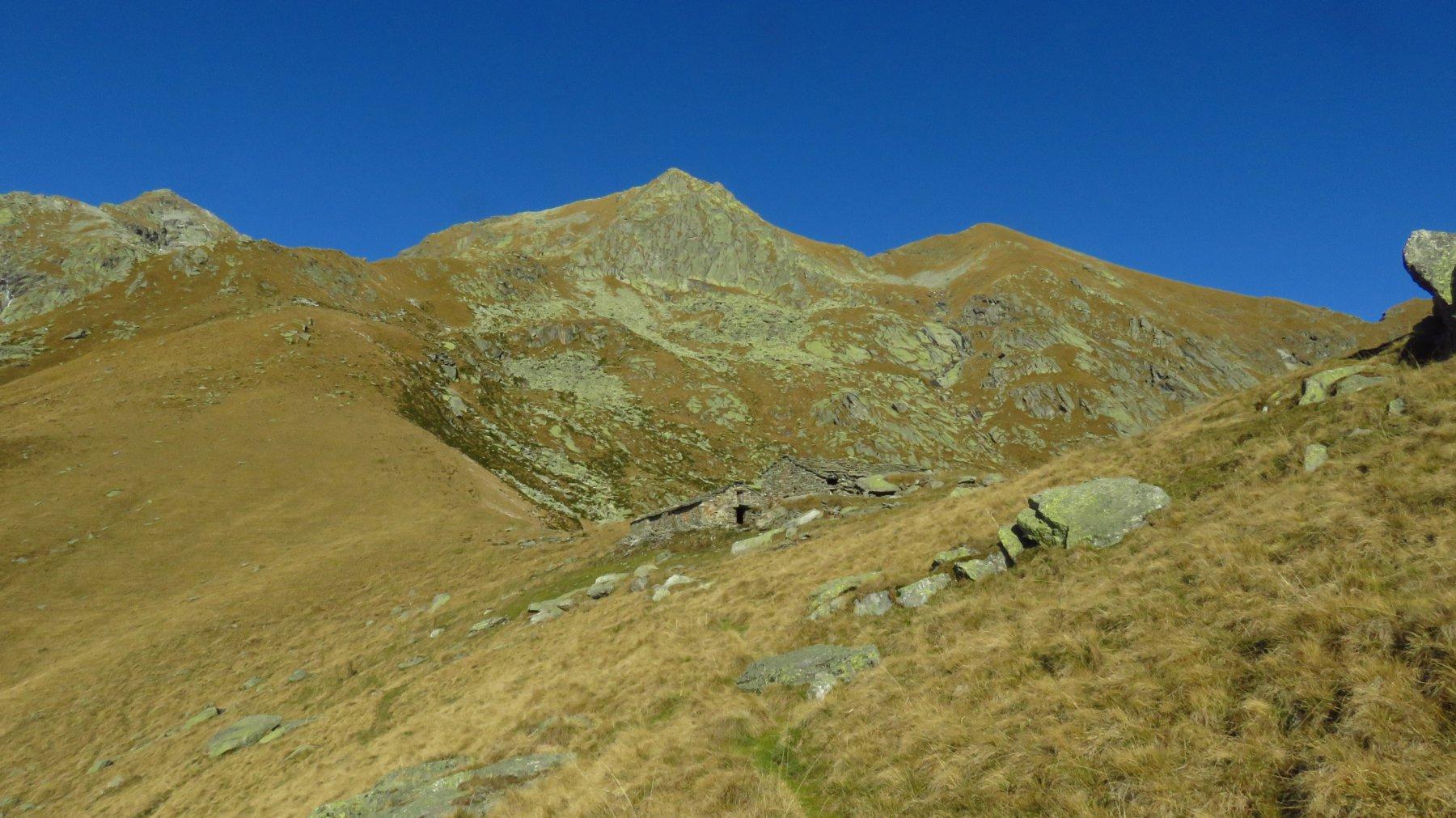 Alpe Colma superiore e sopra, le Punte Manda