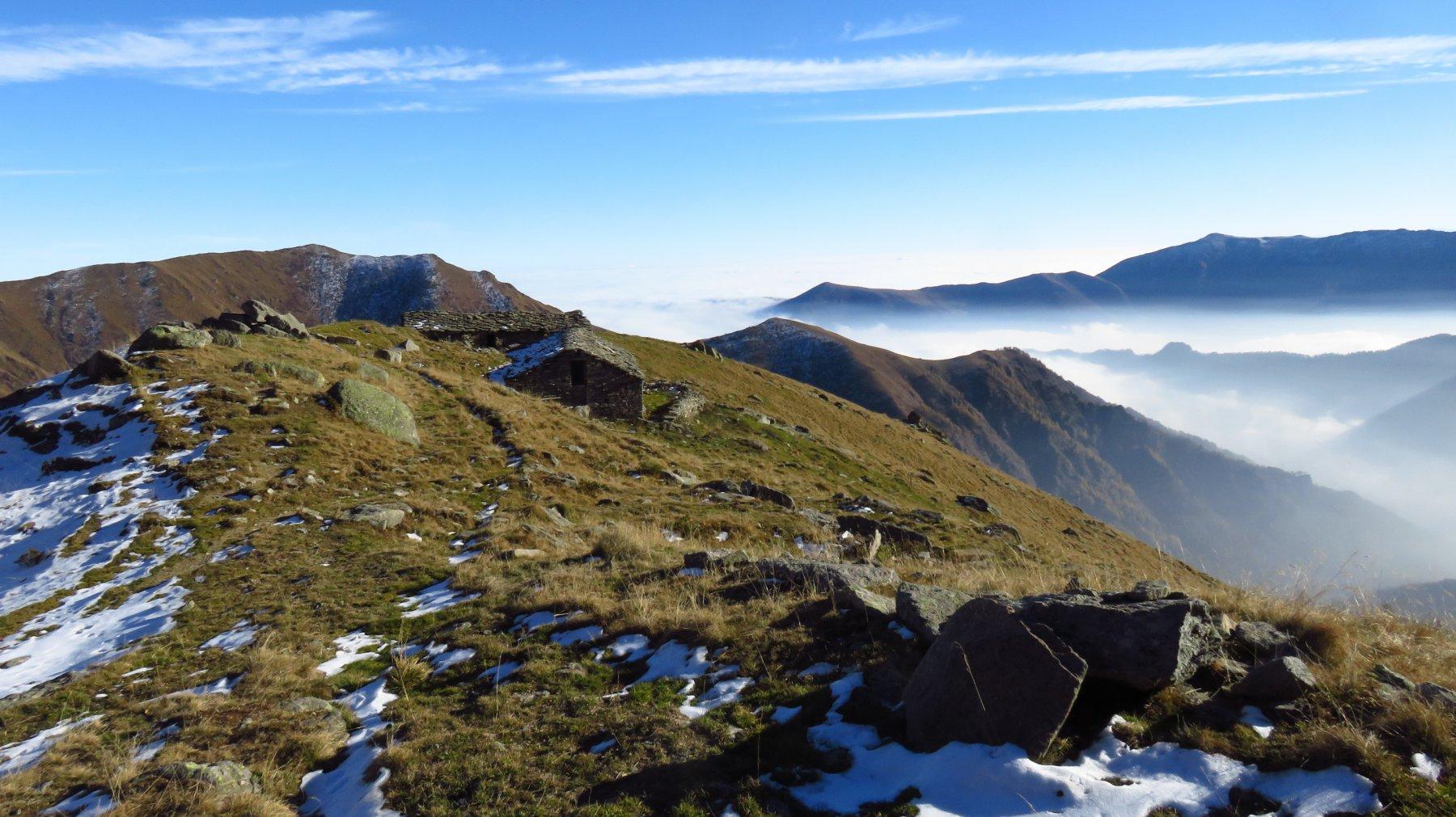 Nuovamente all'Alpe Colma