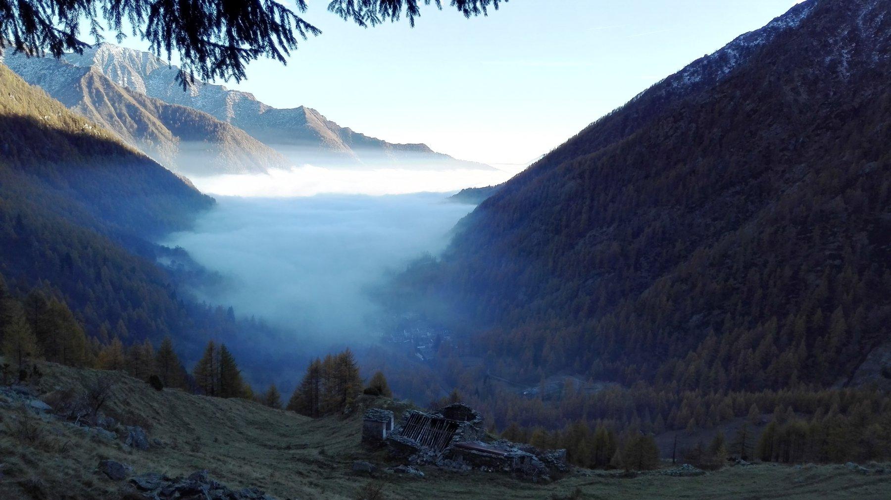 sembra un fiordo norvegese ma è la pianura densa di nebbie