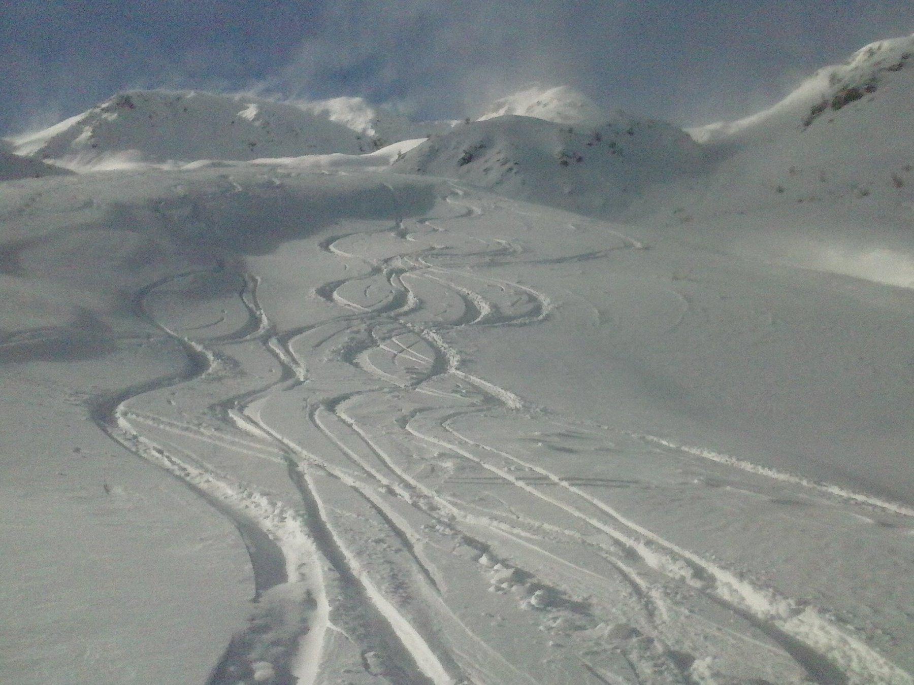 sempre belle curve  su neve fresca con fondo compatto...