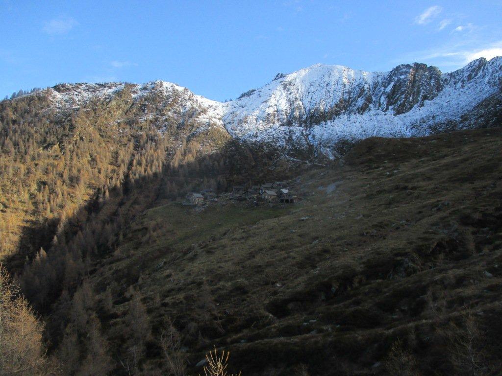 sul traverso in vista del'alpe Colla Alta