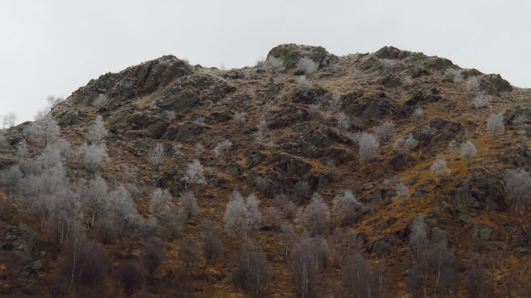 Zoom sul Monte Cavallaria, dal Bardansone