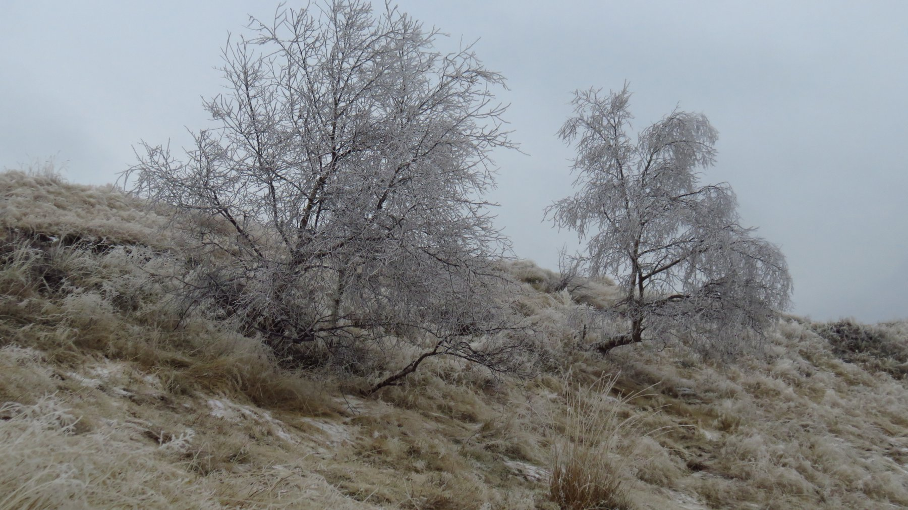 Nebbia, neve, galaverna e freddo, al Colle Pian dei Muli