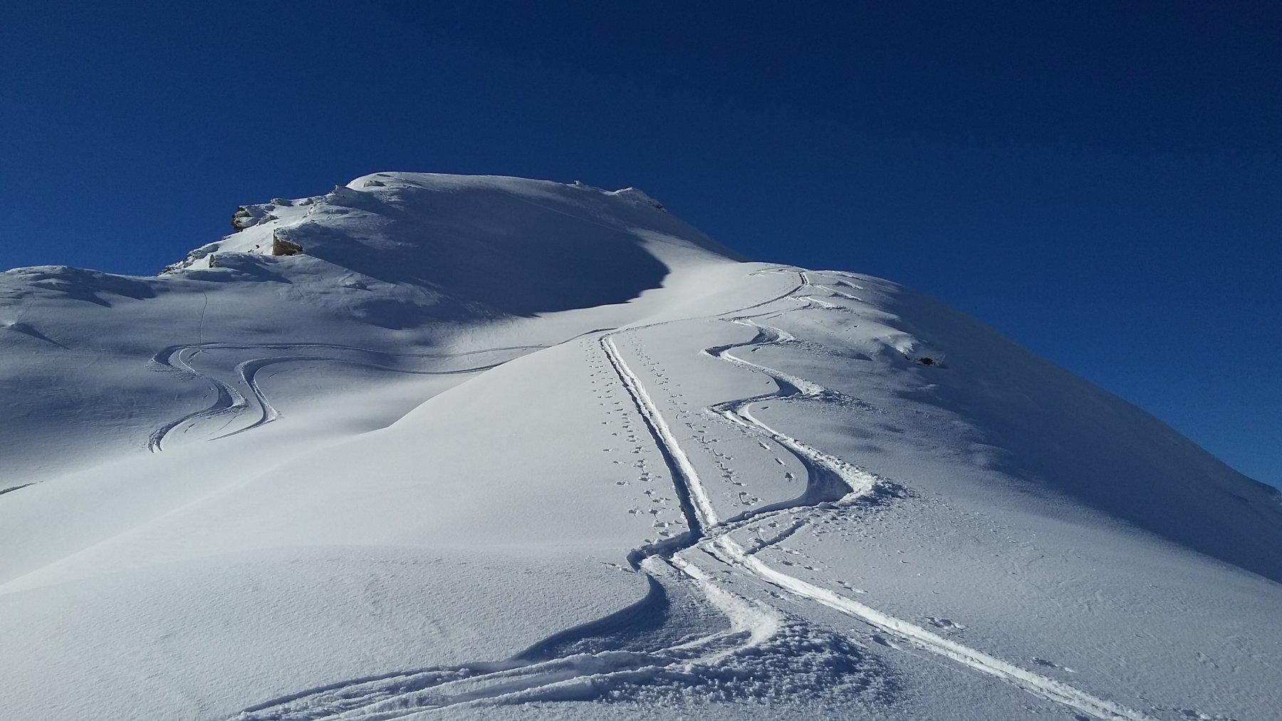 bella neve sotto la punta