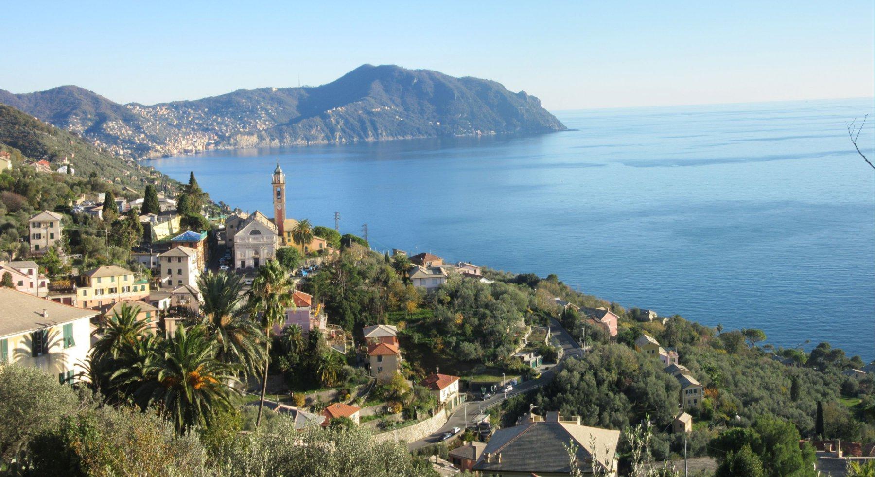 Cordona (Monte) da Nervi a Pieve Ligure 2016-11-30