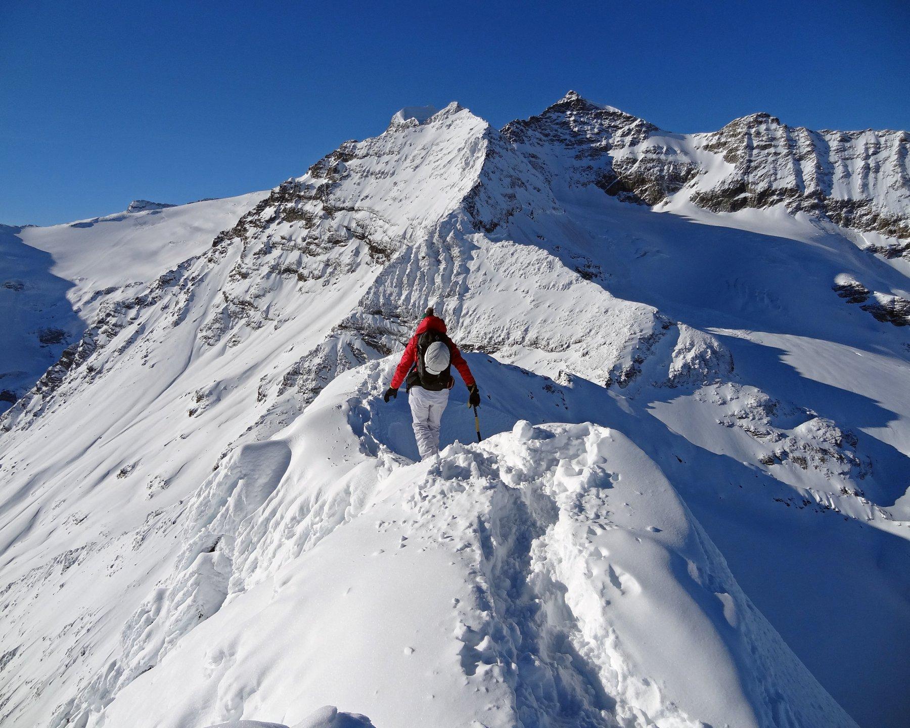 Sassal Mason dall'Ospizio al Passo del Bernina 2016-11-30