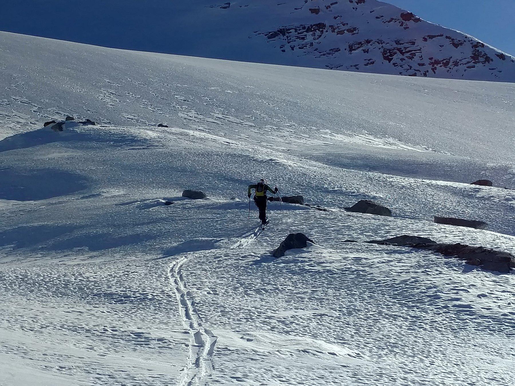 Quasi sul ghiacciaio