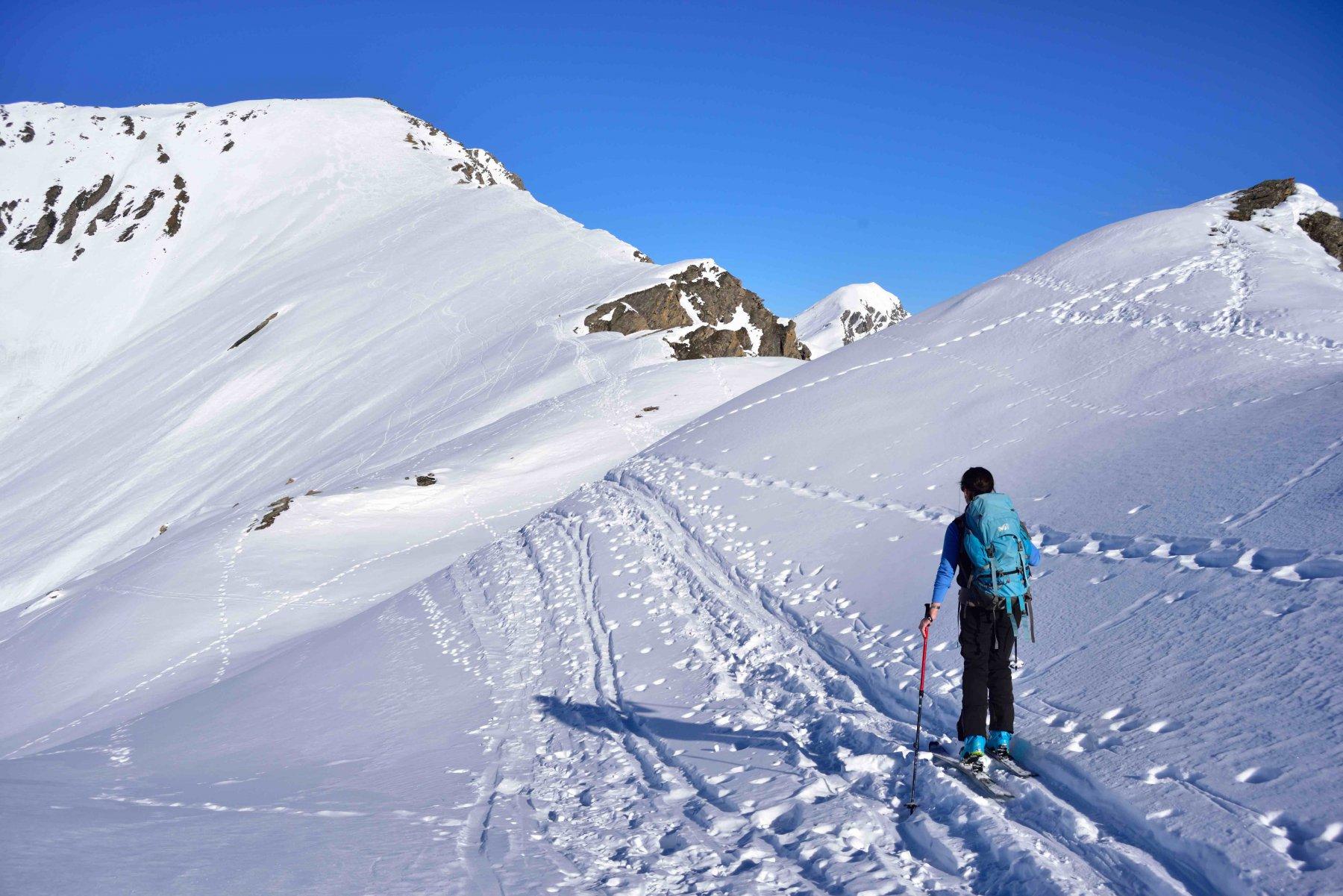 Salendo lungo la cresta Savaresh
