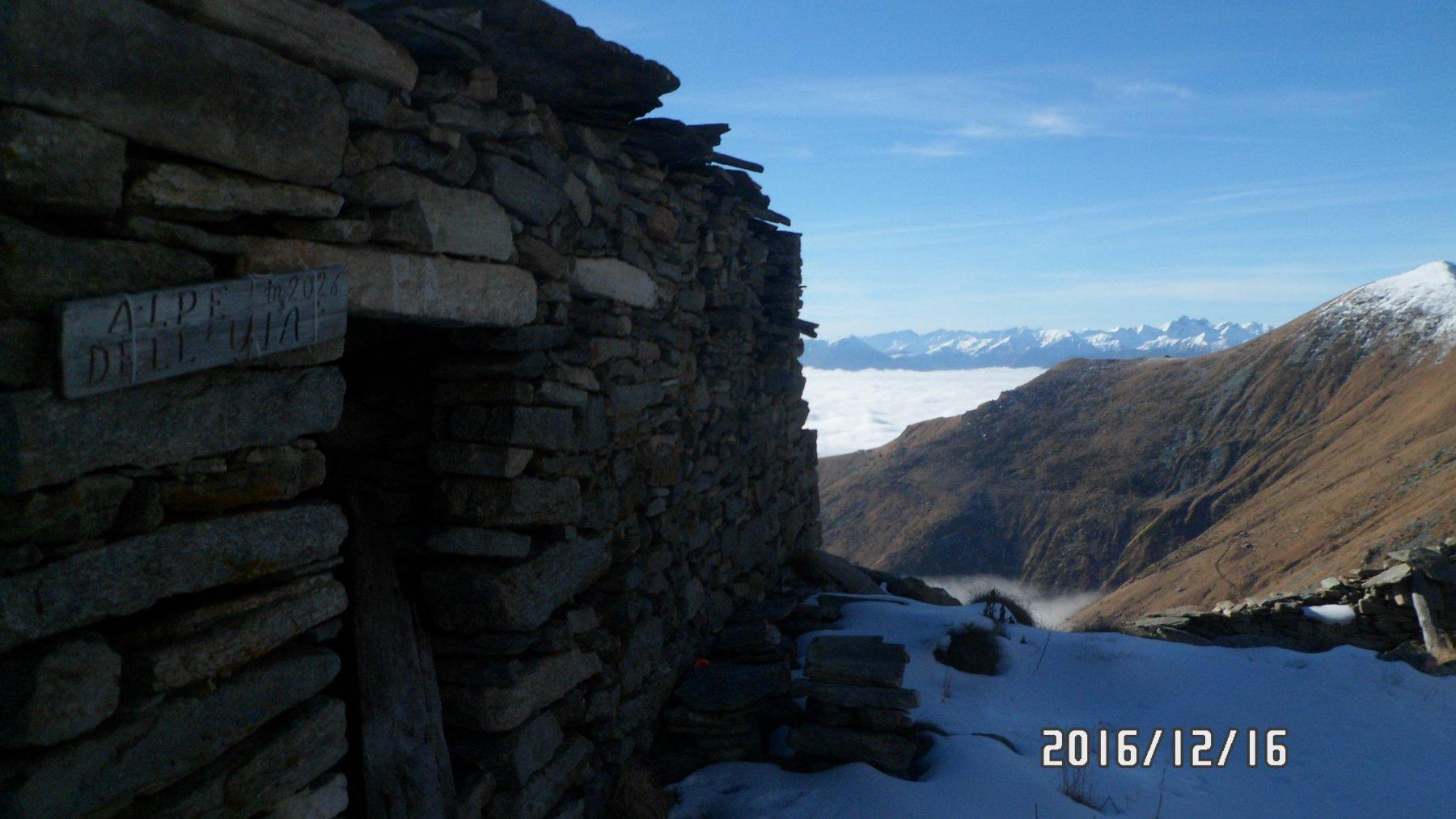 Alpe dell'Uja