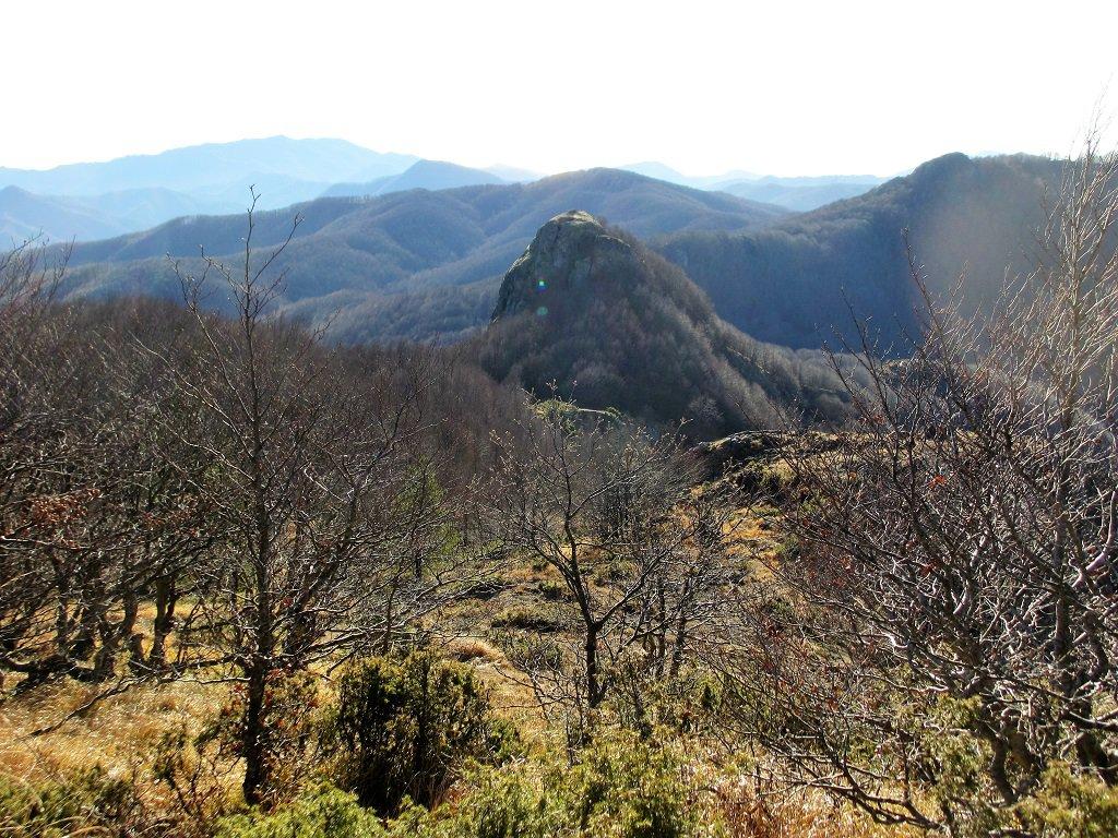 Il Gifarco visto dal Roccabruna