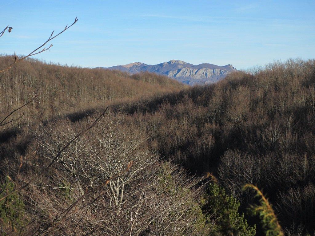 Monte Bue e Maggiorasca