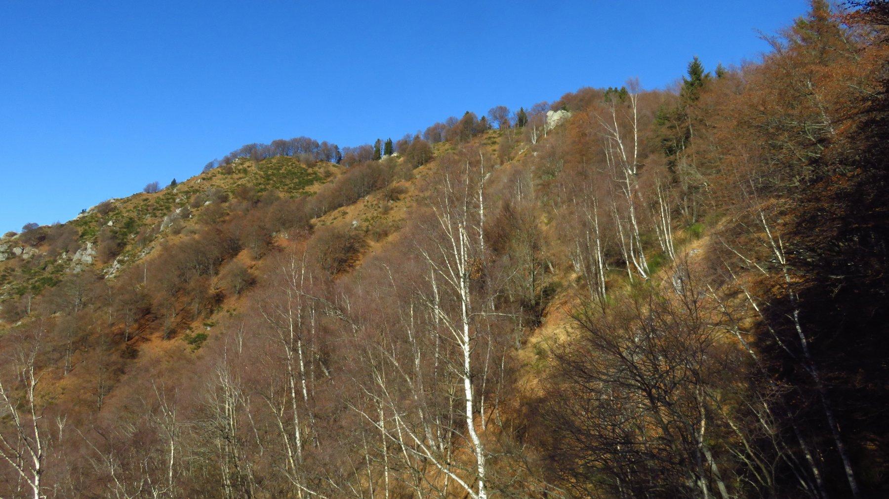 Verso Cima Tirolo e Punta della Croce