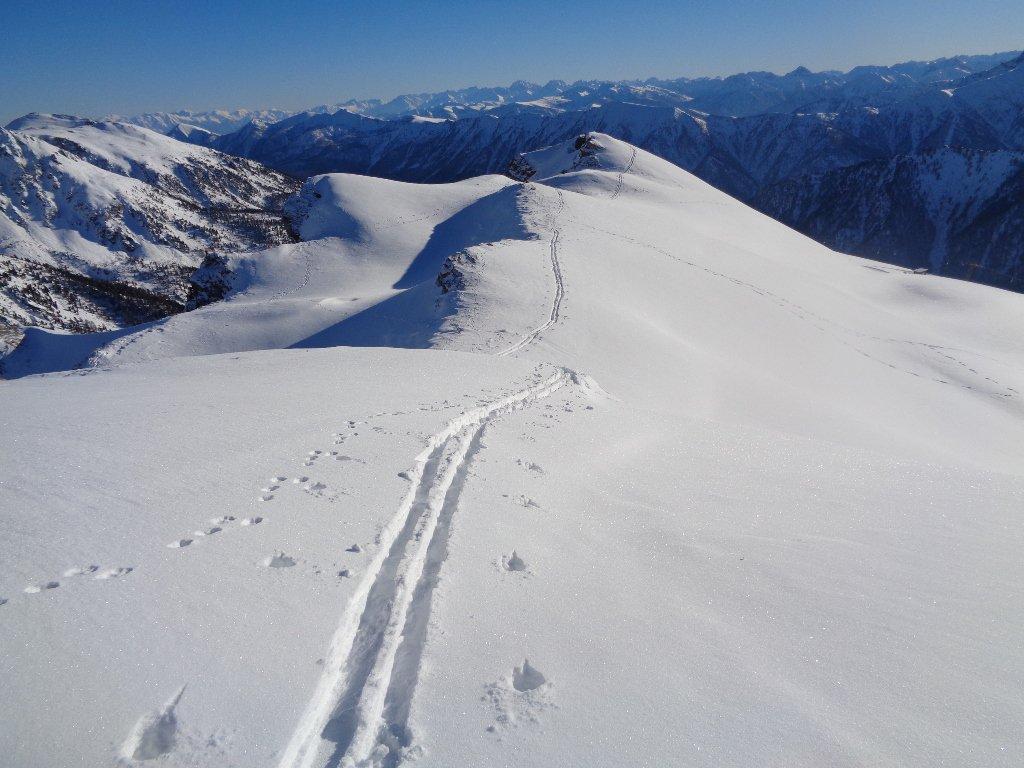 l'aerea cresta Savaresch