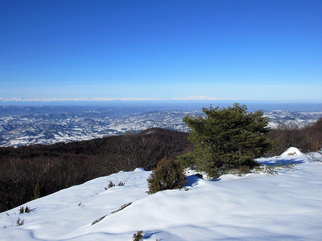Alpi Cozie e Lepontine
