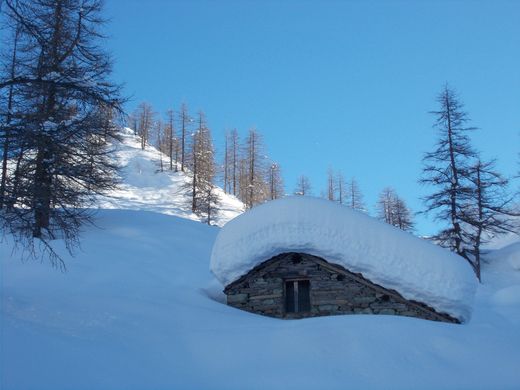 all'alpe Tovetto..un idea di quanta neve c'e'..