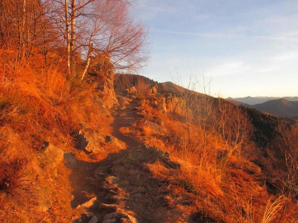 il bel sentiero verso il Pian Cavallone
