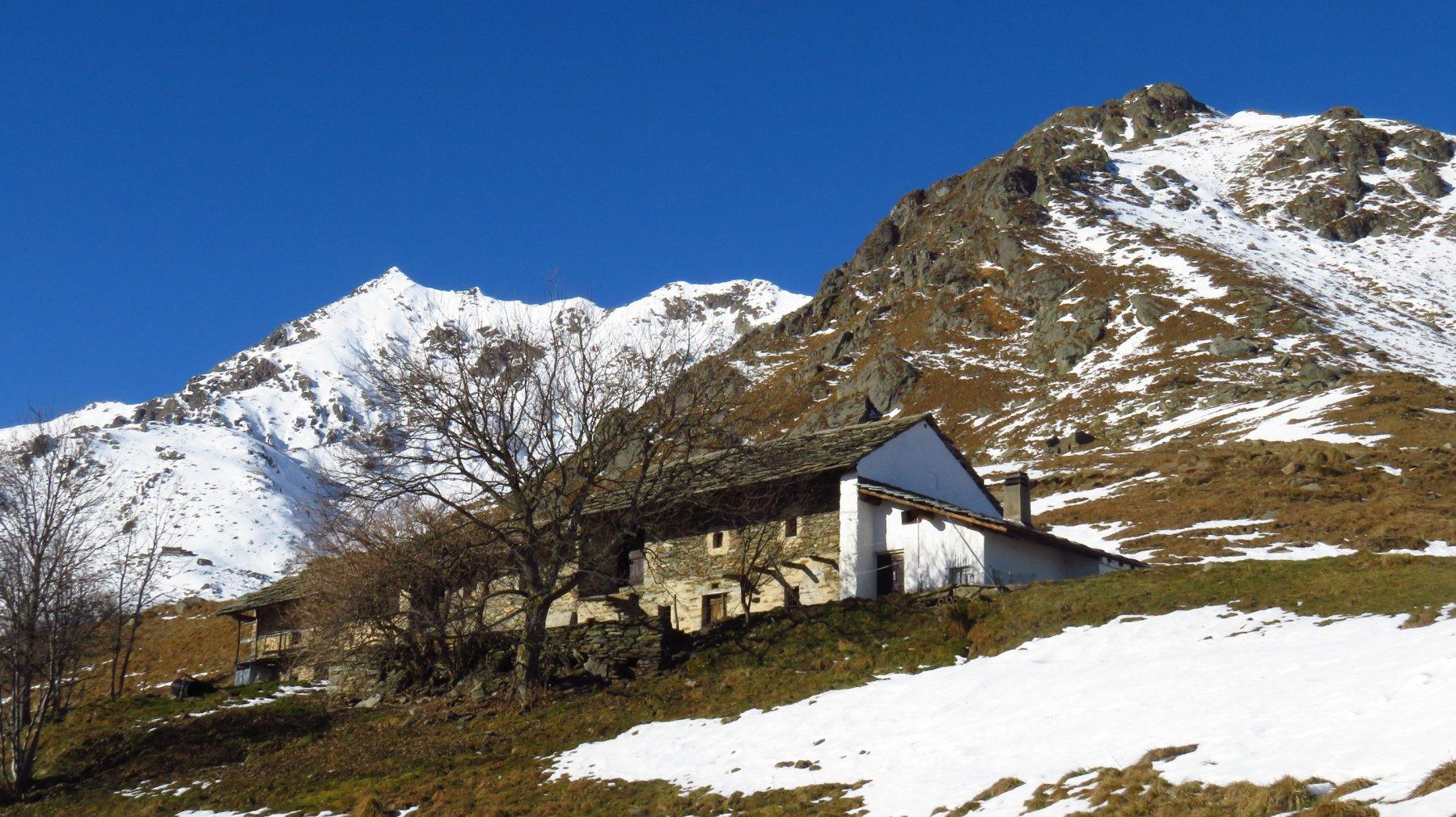 Alpe Frera