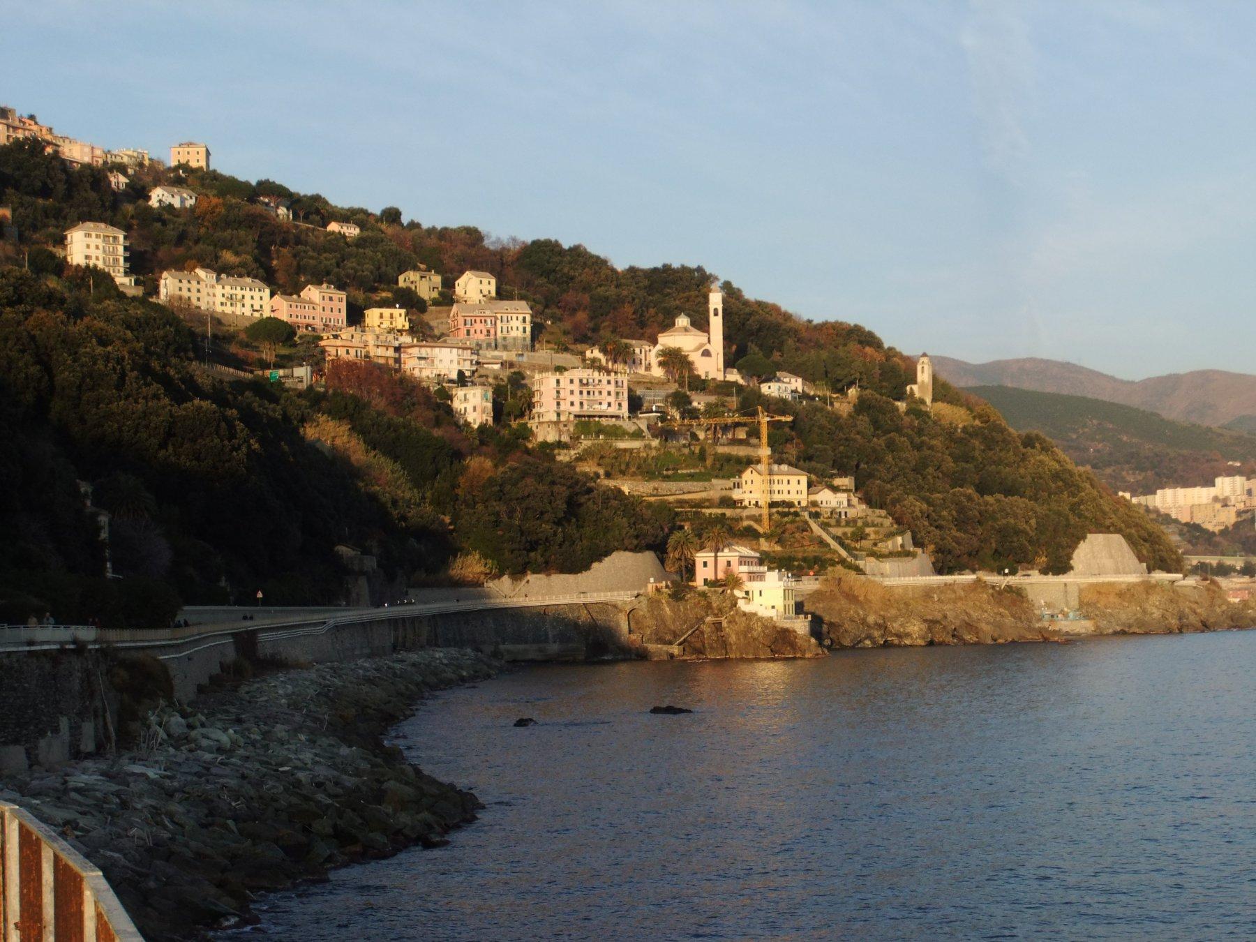 Tardia Ponente (Monte) da Voltri, anello per Rocca dell'Erxo, Monte Tardia Levante, Arenzano 2016-12-28
