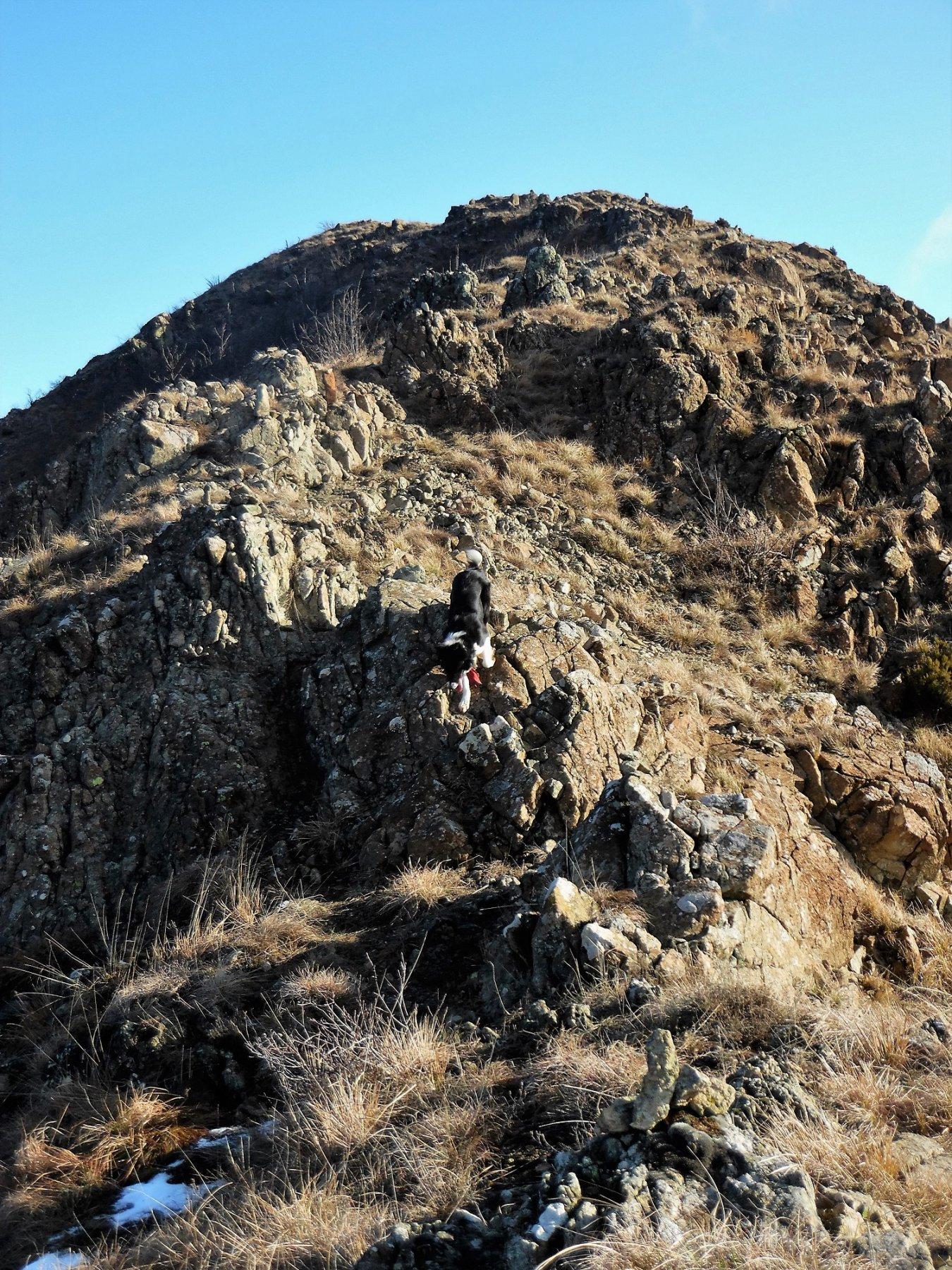 Cresta di Castiglione