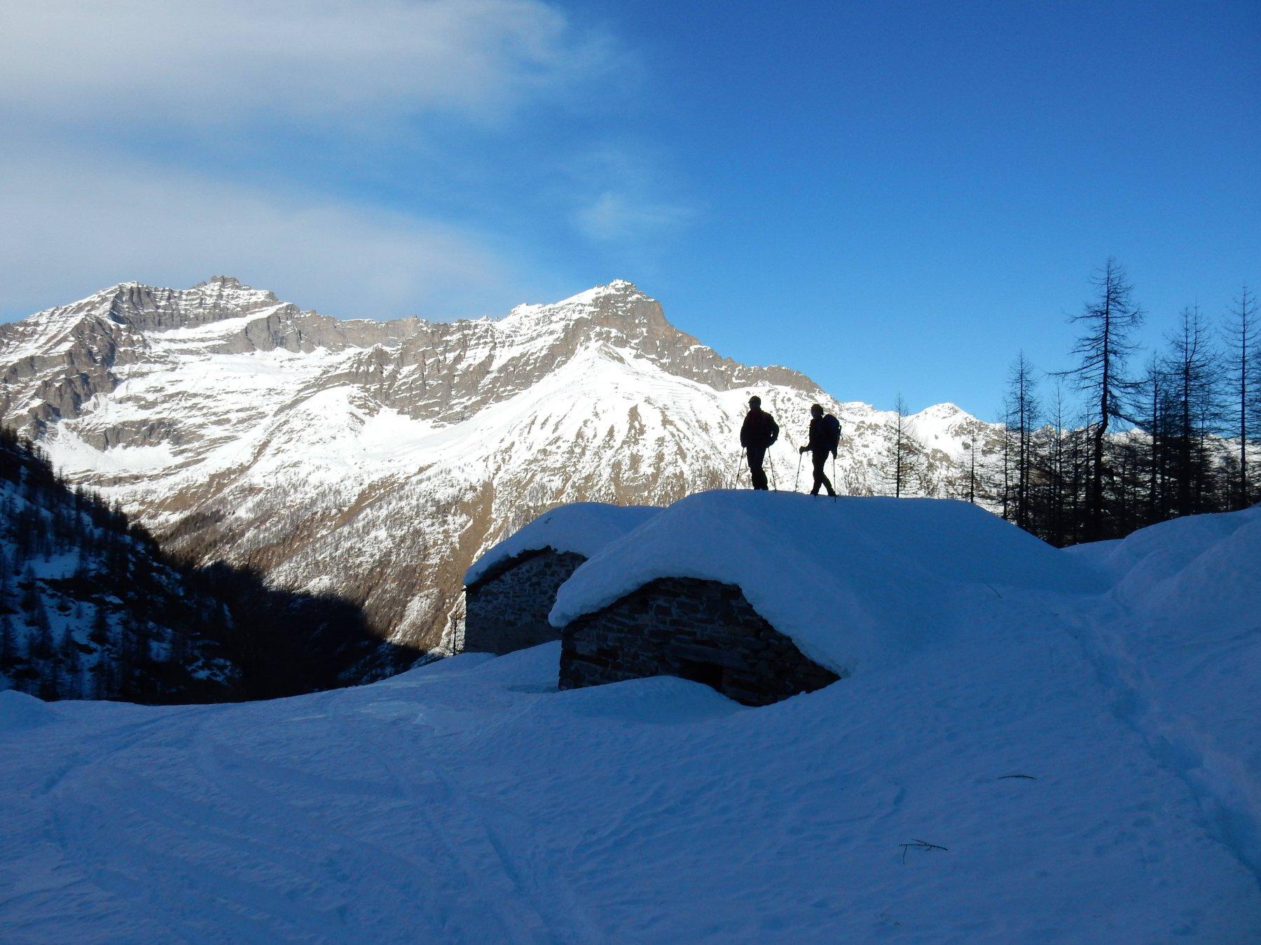 Alpe Fojera 2024mt.