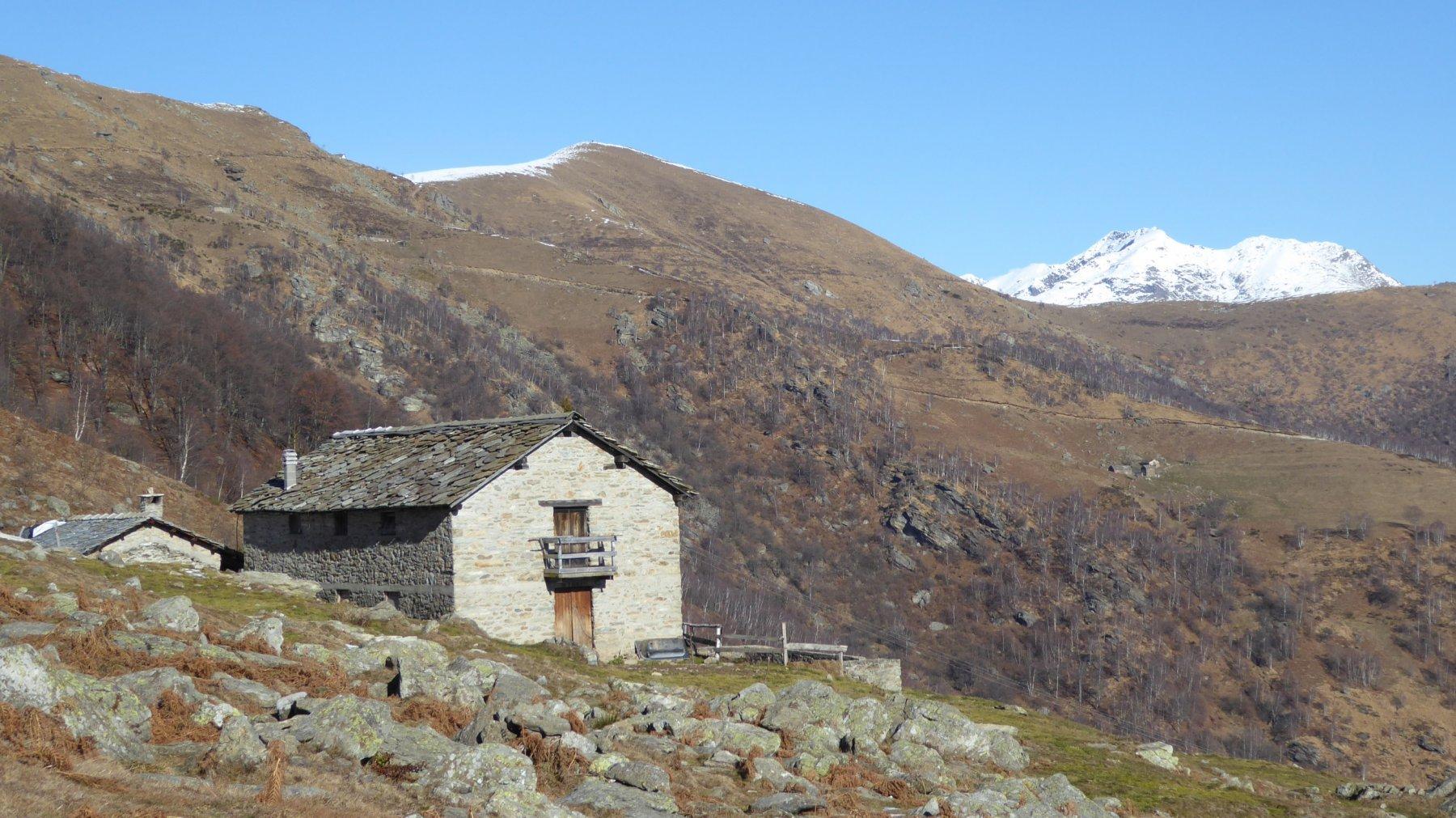 Alpe Eredi Curti
