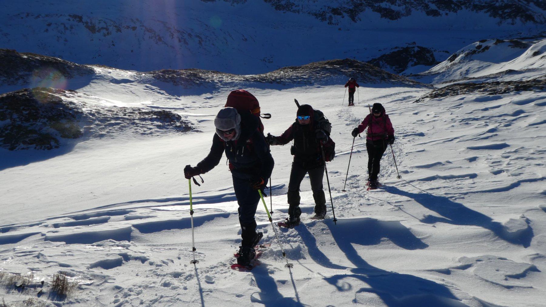 salendo lungo il versante SE della Punta Elgio a quota 2450 m