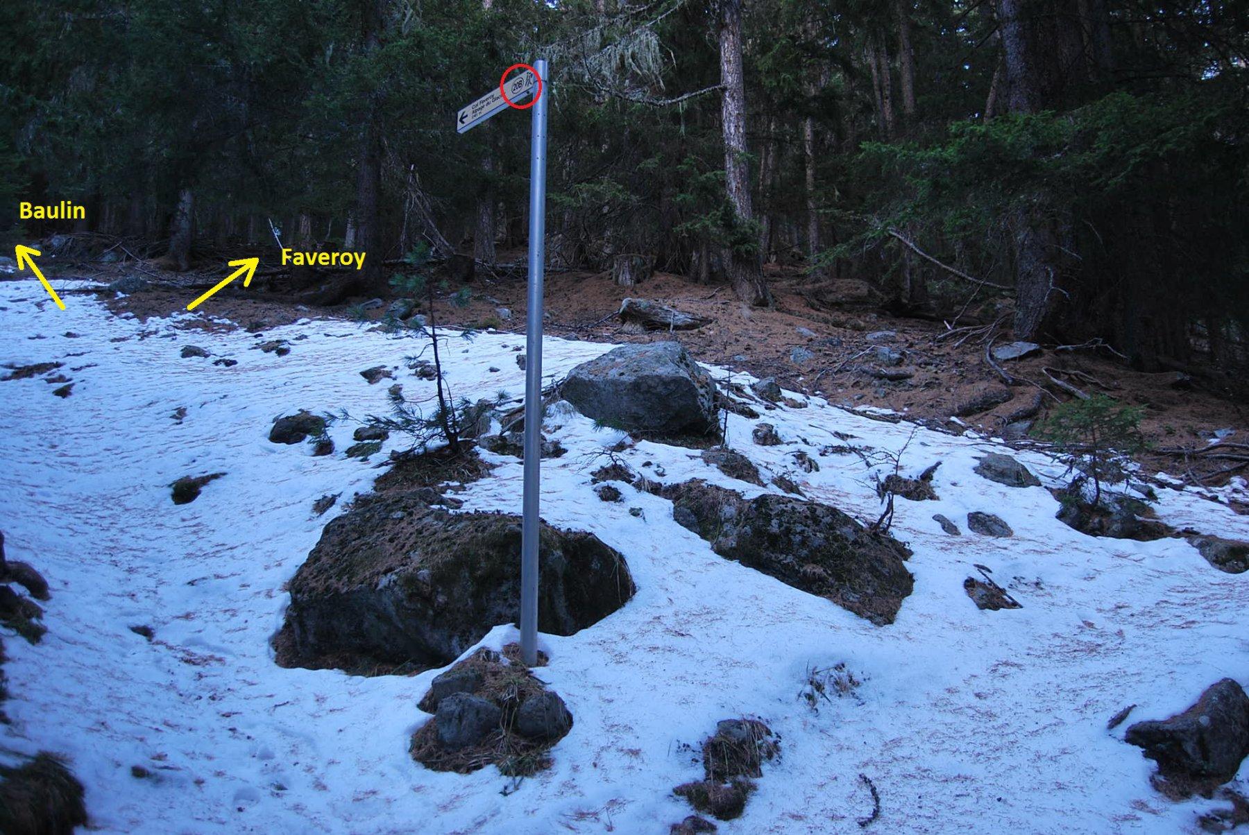 L'arrivo alla palina. Se si segue la direzione della freccia, il sentiero porta a Baulin; per il colle occorre piegare a destra, ma le indicazioni non sono evidenti