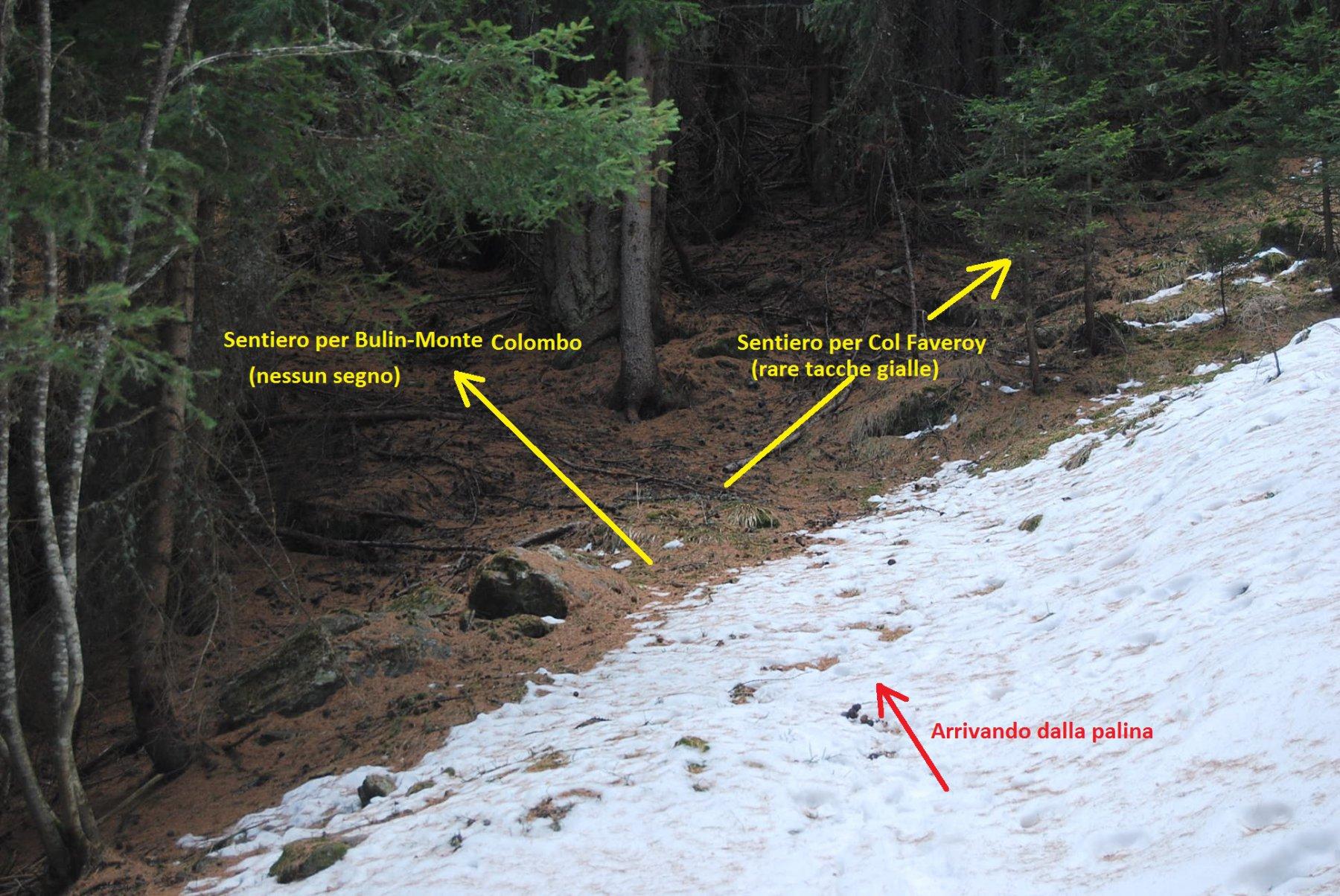 Il bivio appena a valle della palina. Il sentiero per il colle non è evidente e si è portati a proseguire diritto.
