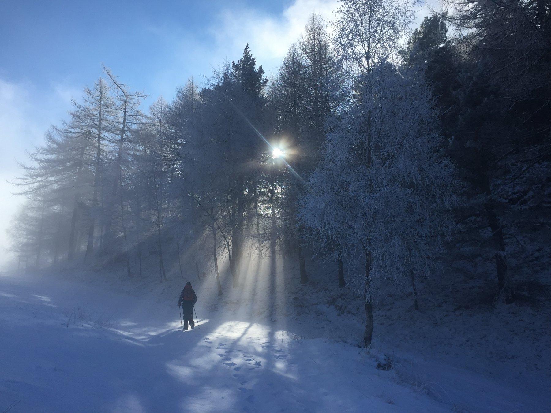 Seura (Alpe) da Verres per il Col Vert 2017-01-11
