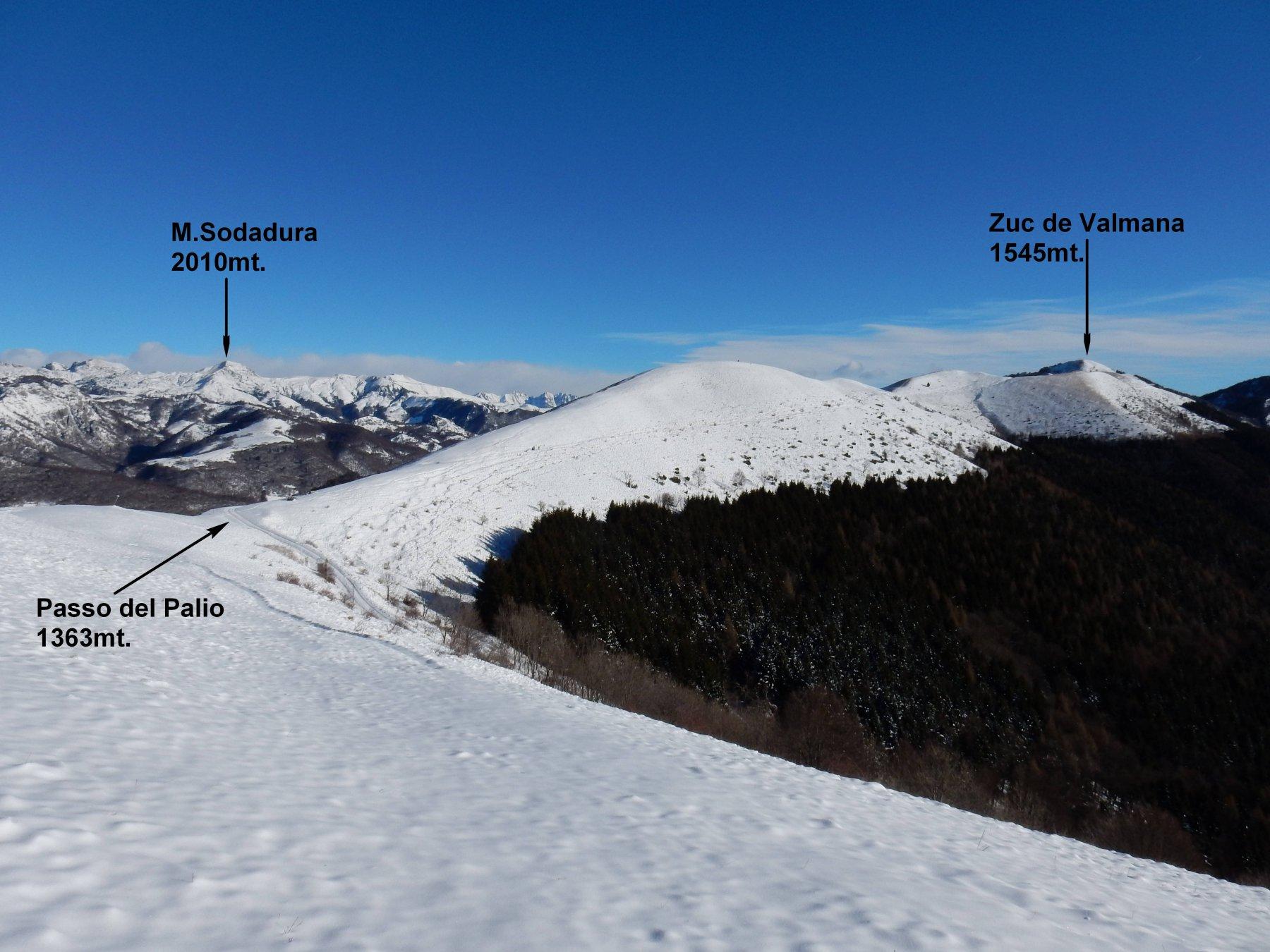 Verso il Passo del Palio, sulla panoramicissima costa un po' spelacchiata.