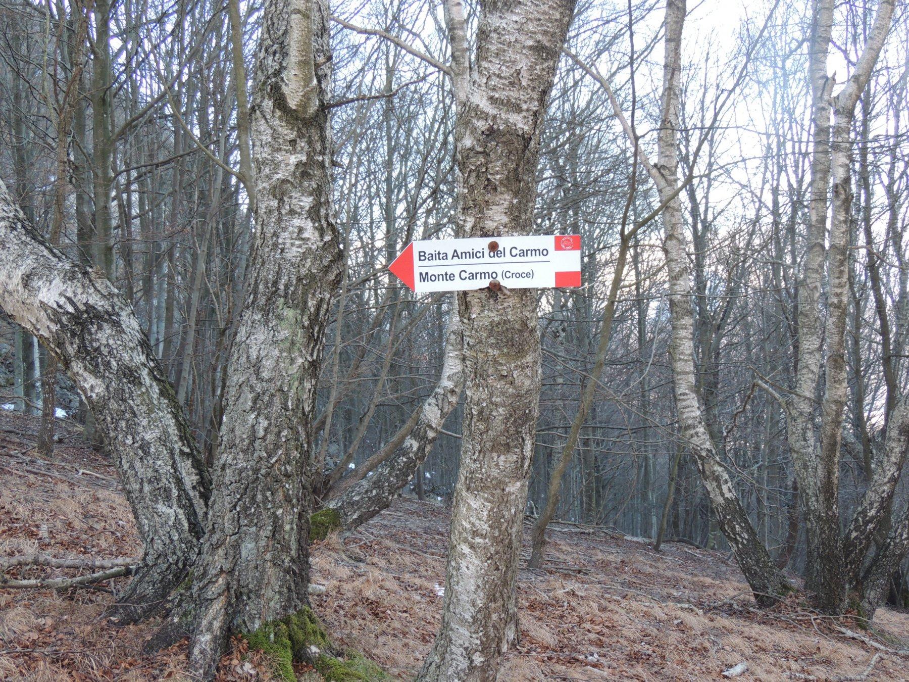 indicazione x sentiero delle scalette