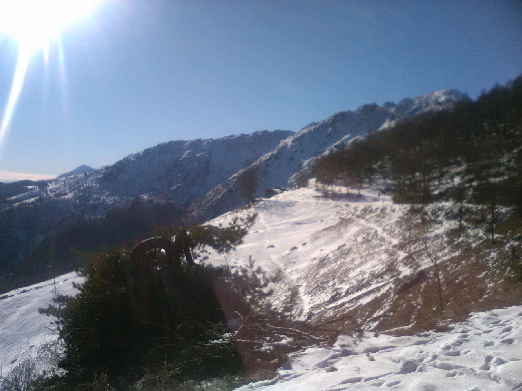 quasi all' Alpe Belvedere